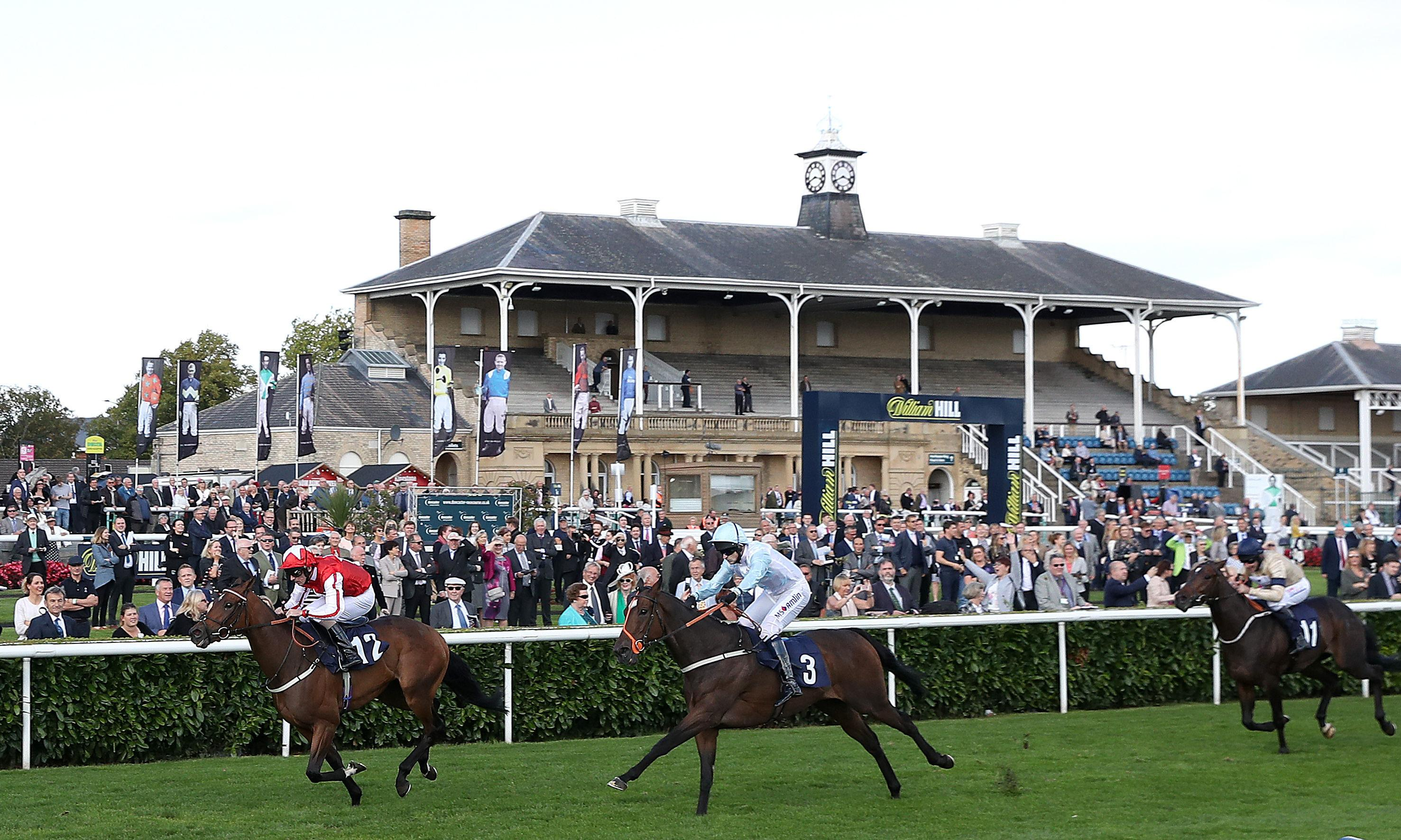 Talking Horses: tips for everything from the Lincoln to Dubai World Cup
