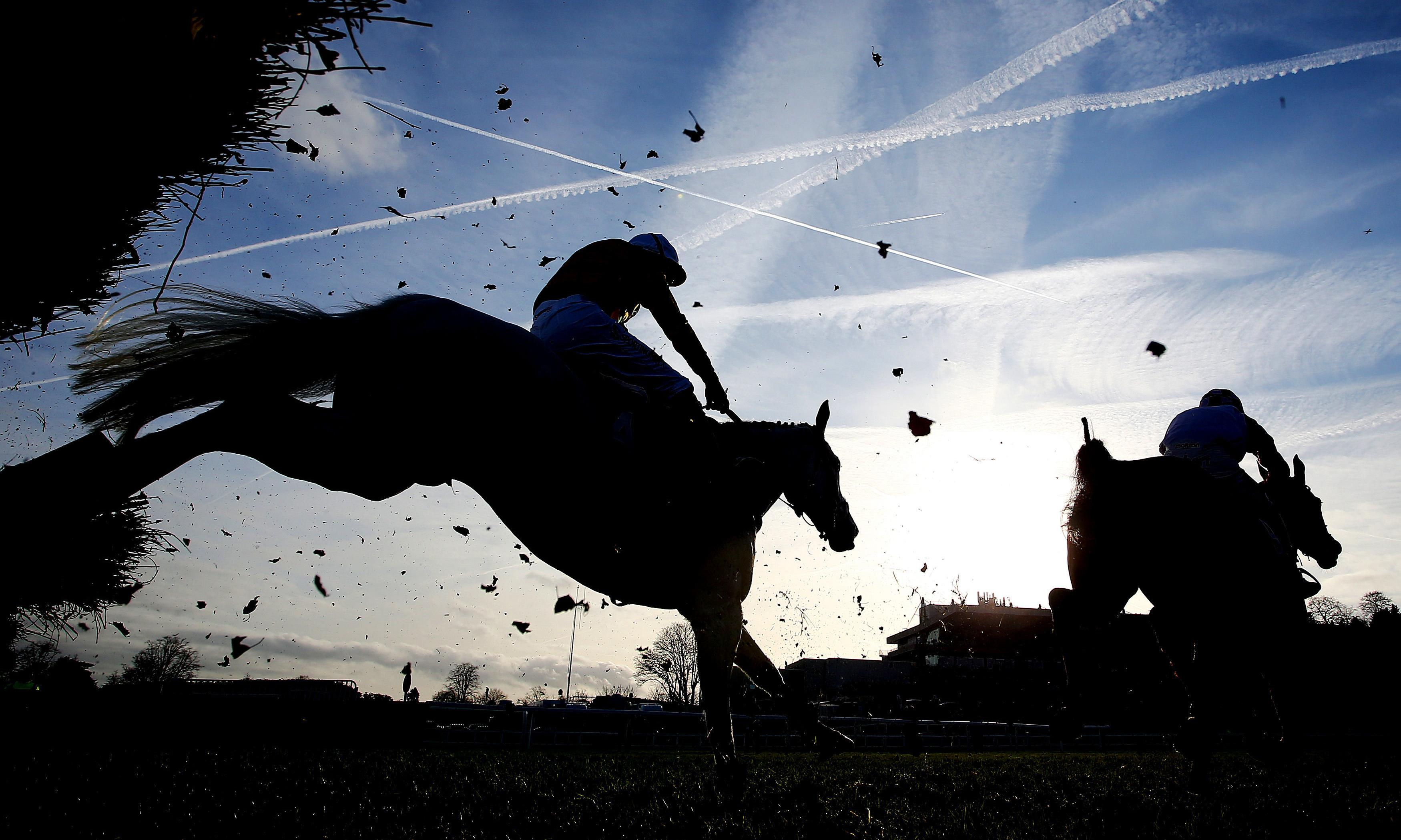 Talking Horses: Sandown seven either failed to see the flag, or ignored it