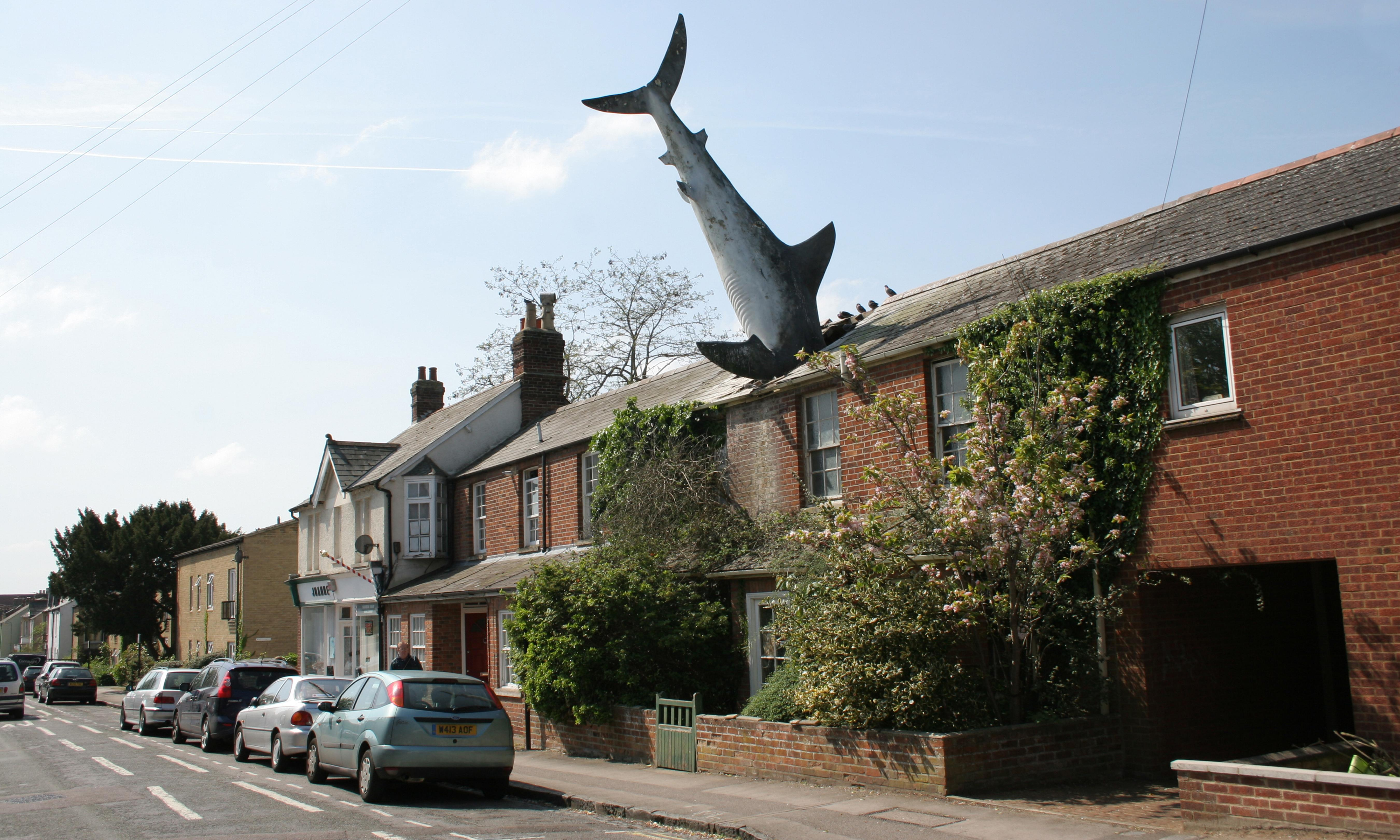 'It went in beautifully as the postman was passing': the story of the Headington Shark