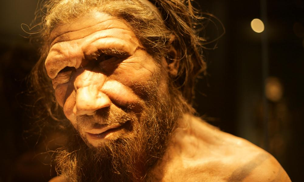 A reconstruction of a Neanderthal, created for the Natural History Museum, London.