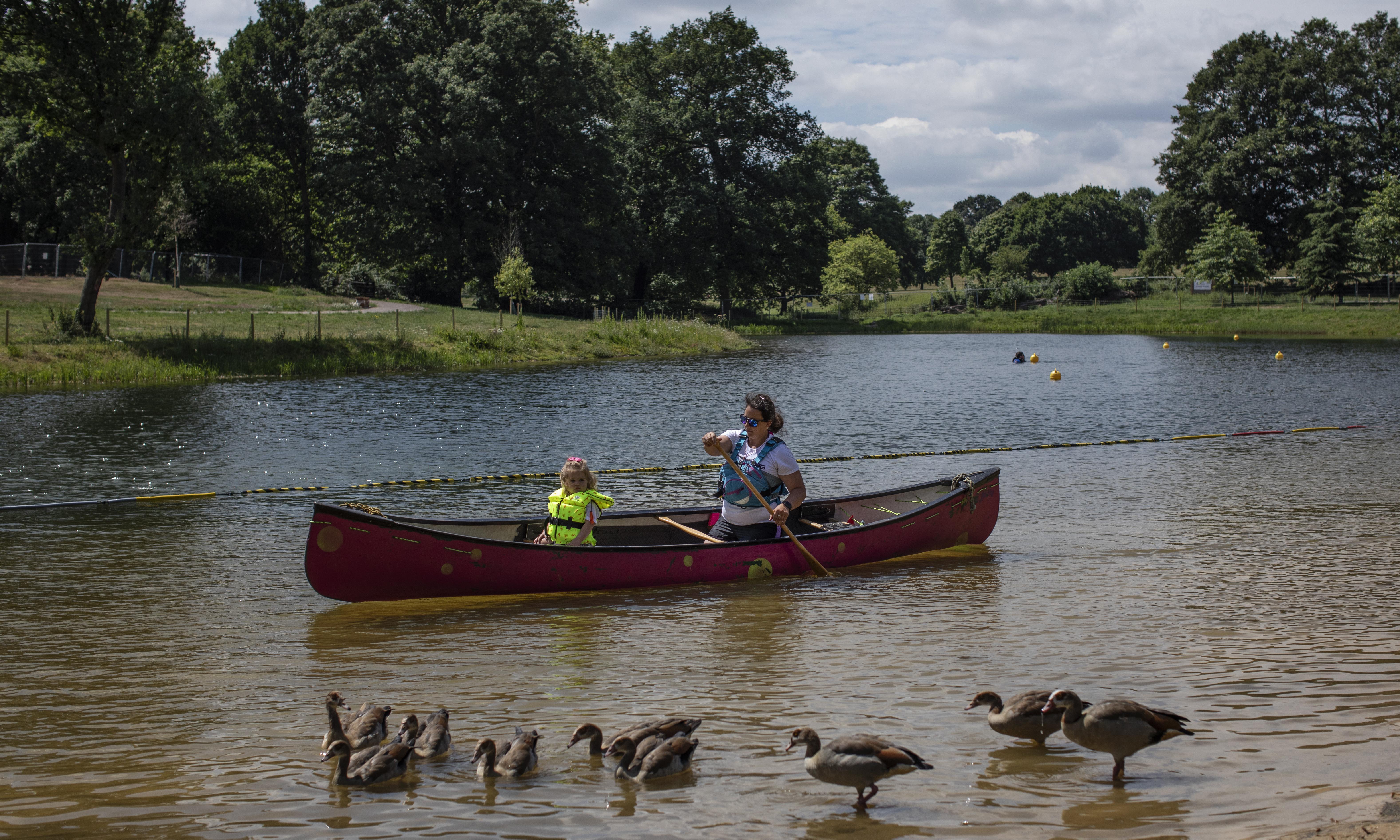 Wild swimming lake to open in Beckenham