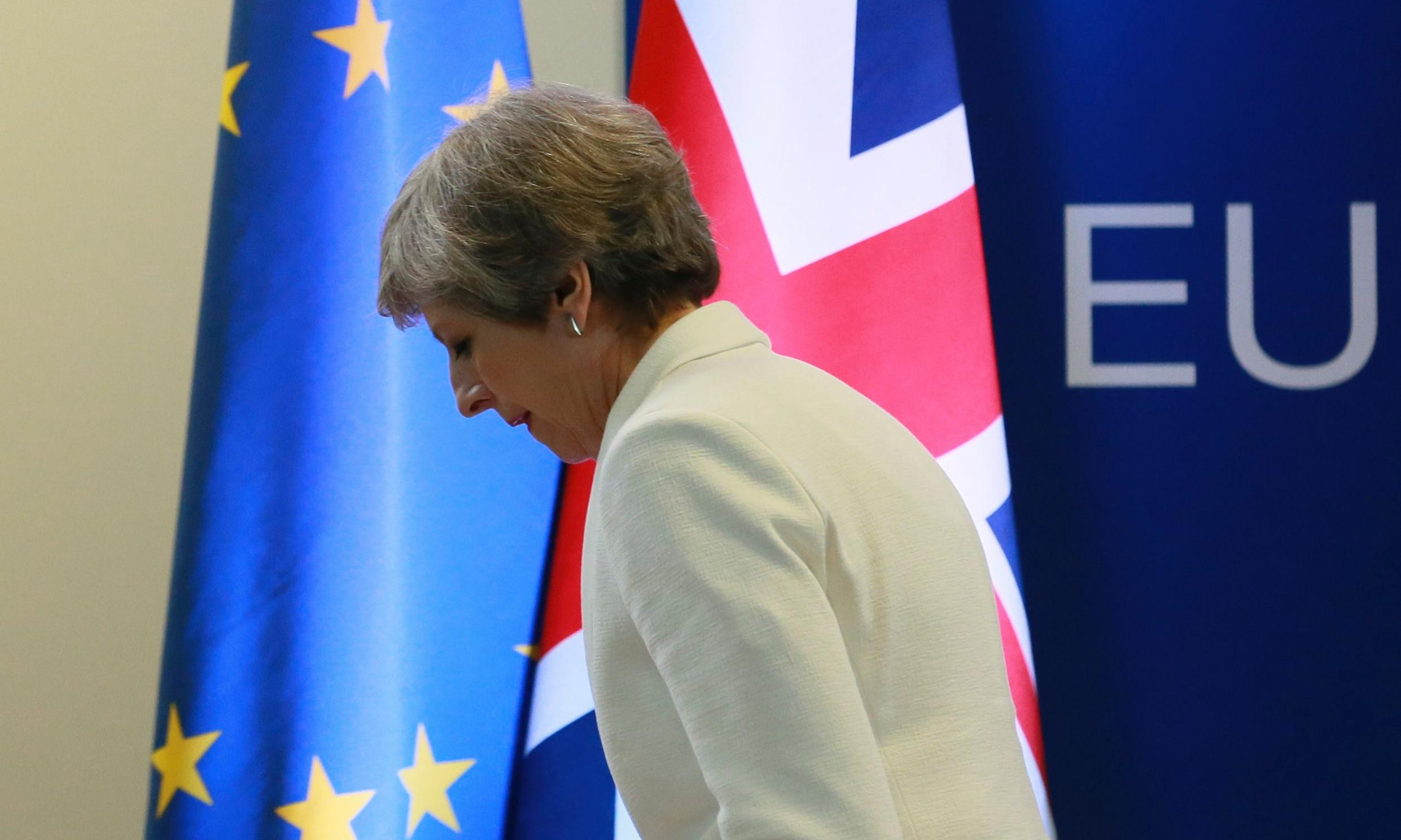 May 'did not understand EU when she triggered Brexit'
