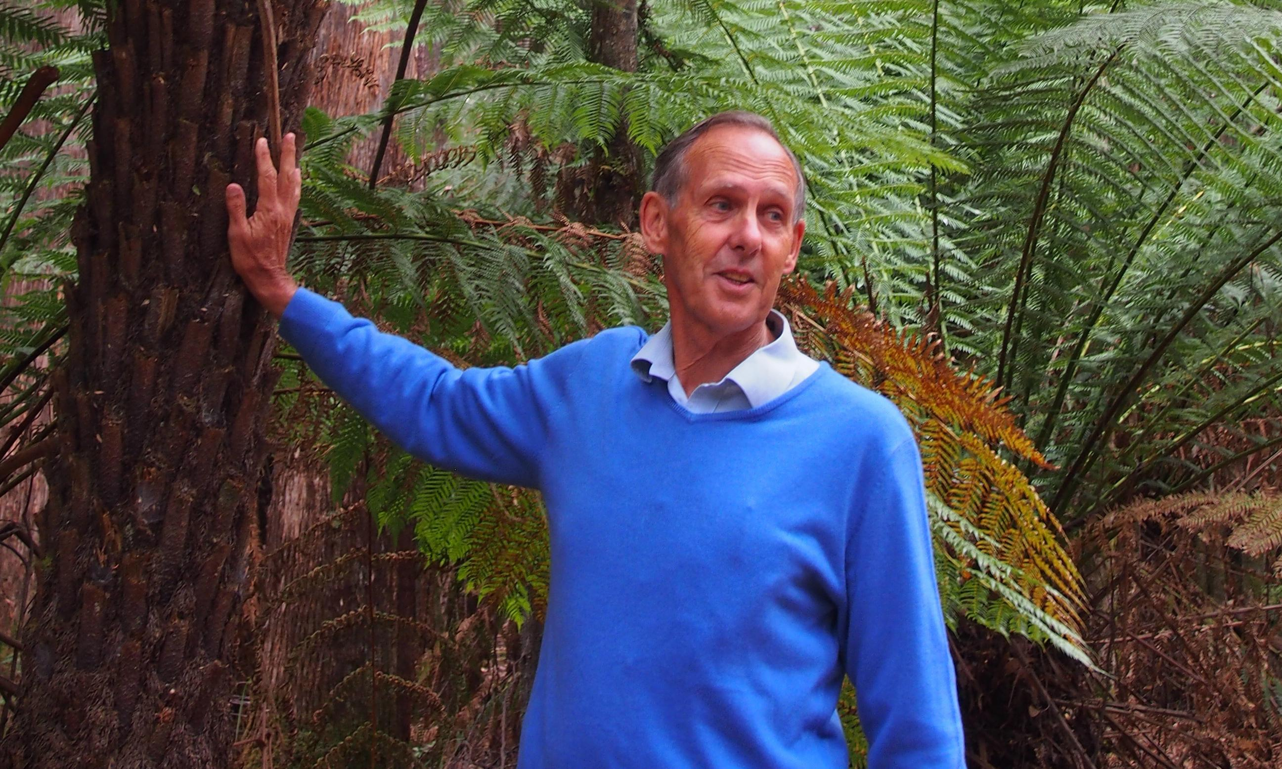 Tasmanian anti-logging protesters banned from forests over 'unsafe behaviour'