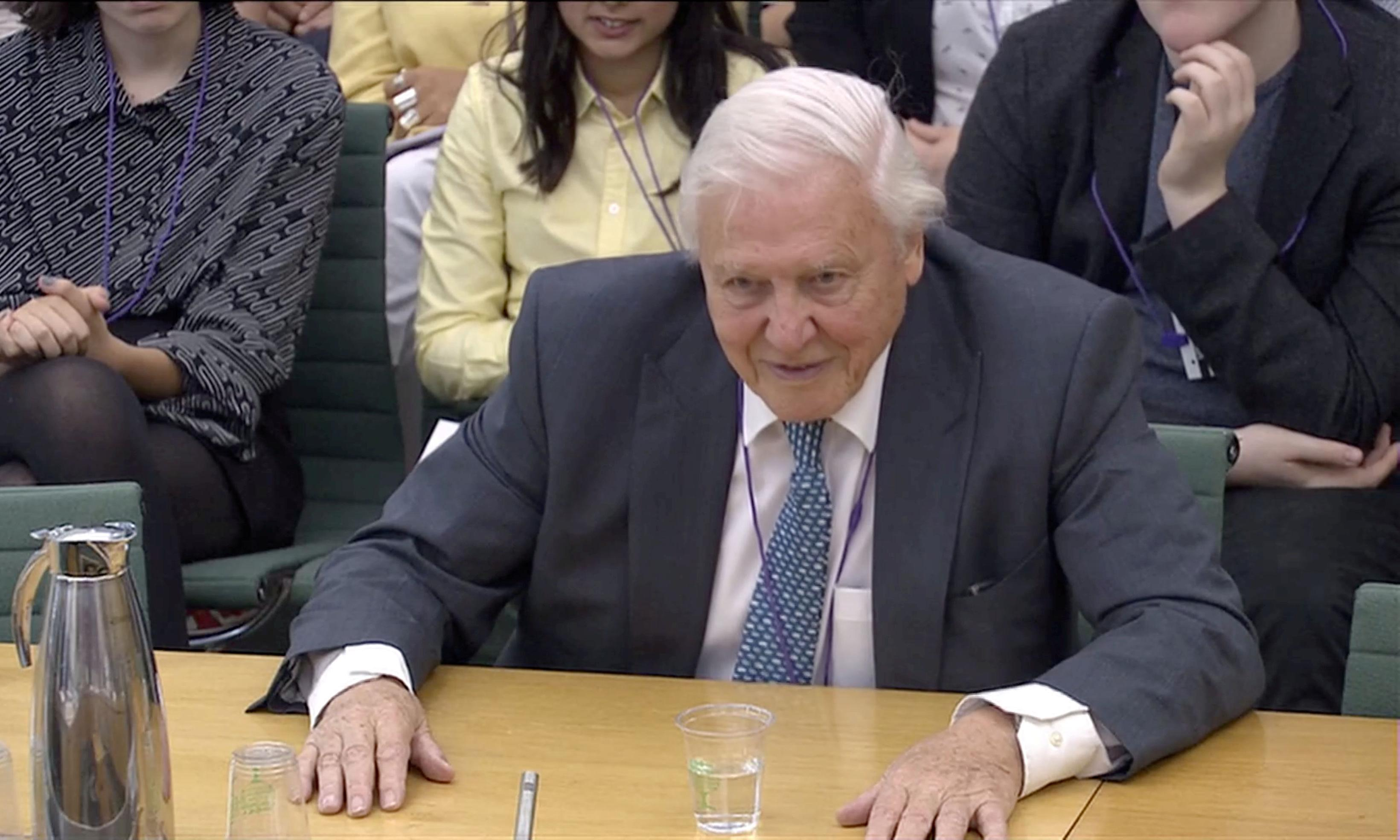 David Attenborough: polluting planet may become as reviled as slavery