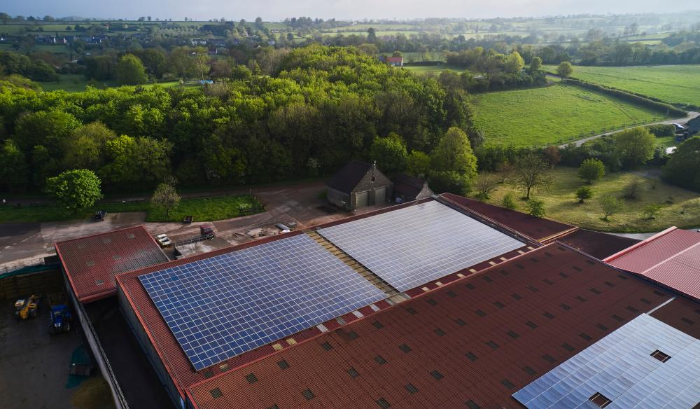 This is reportedly the largest privately owned solar panel system in the UK, atop the Worthy Farm cowsheds.