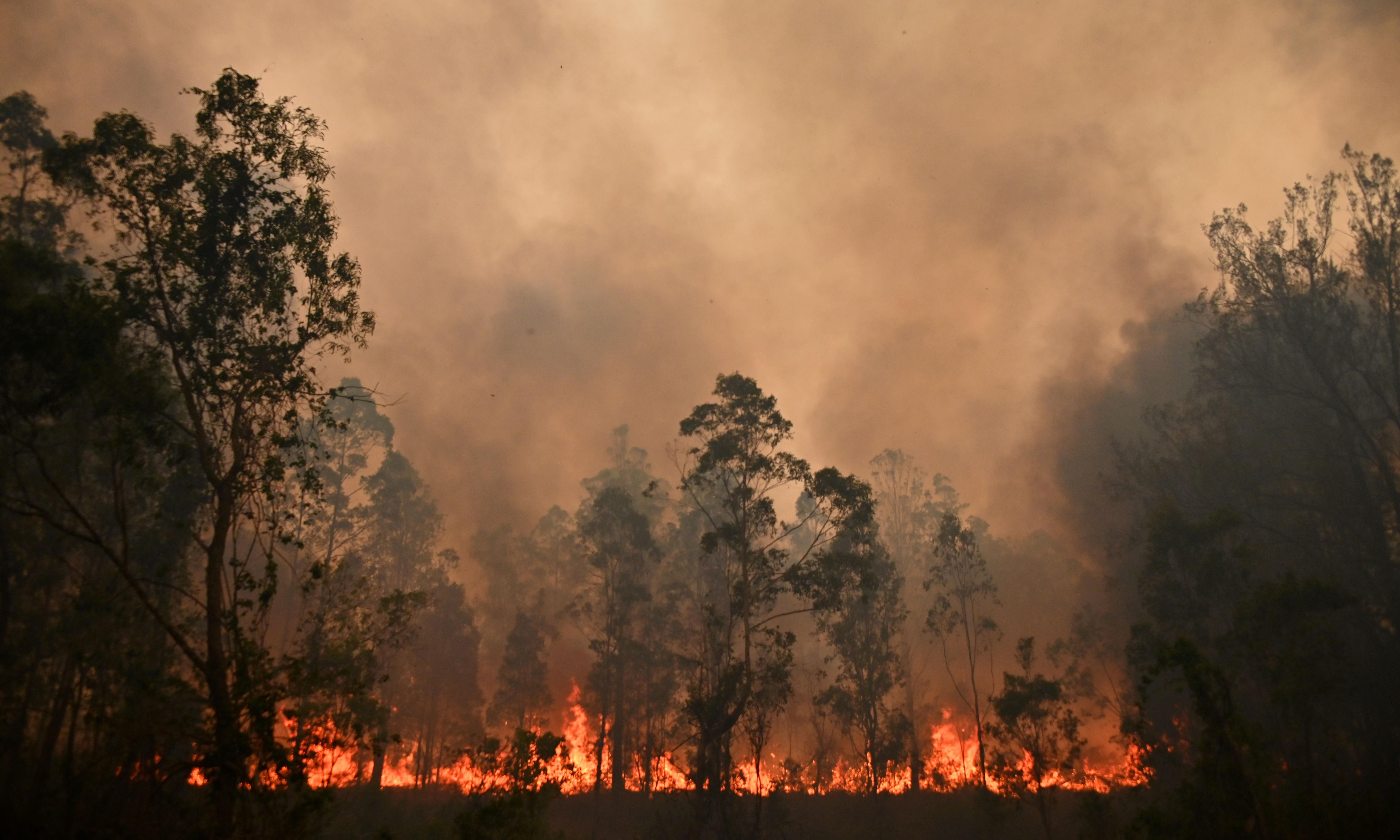 We are seeing the very worst of our scientific predictions come to pass in these bushfires