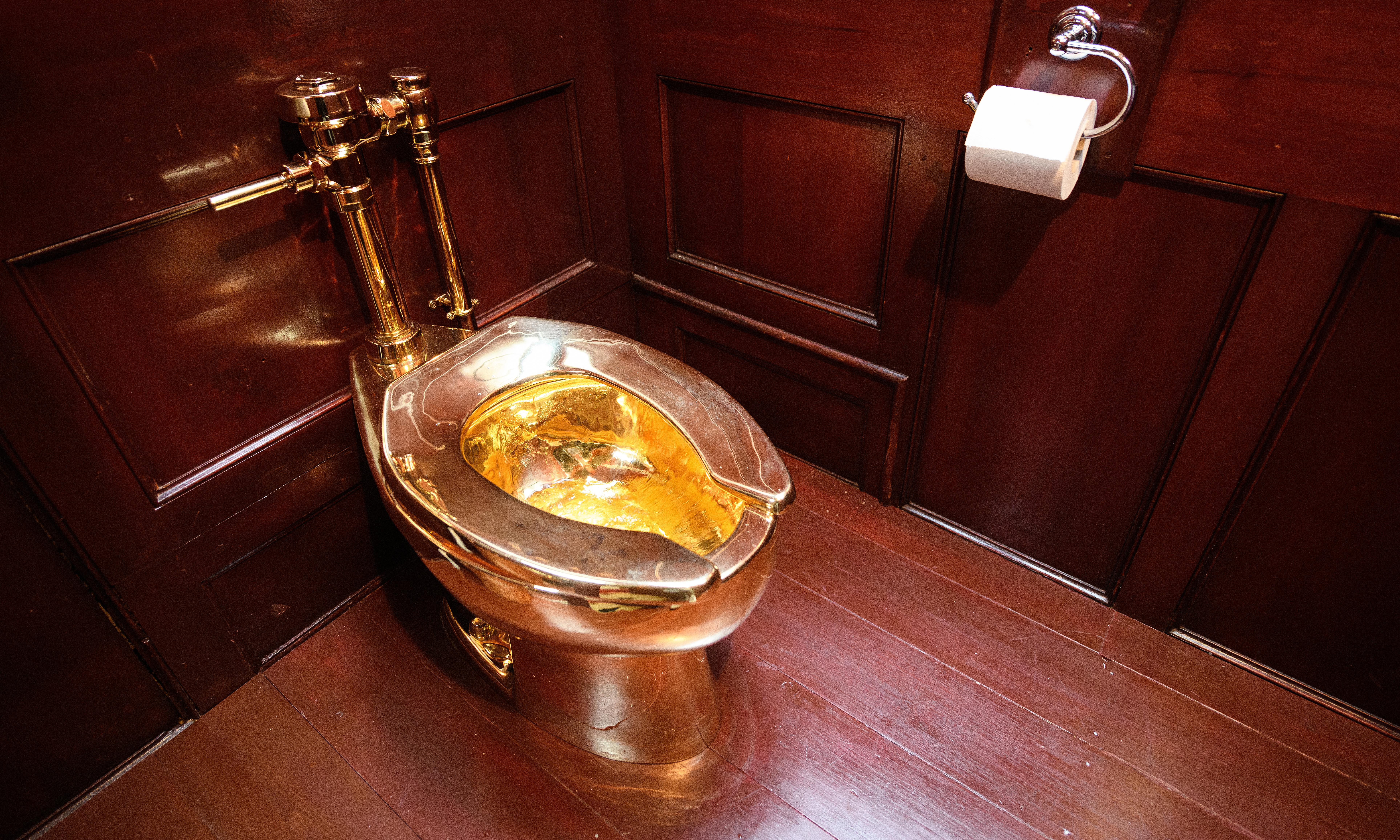 Second man arrested over Blenheim Palace gold toilet theft