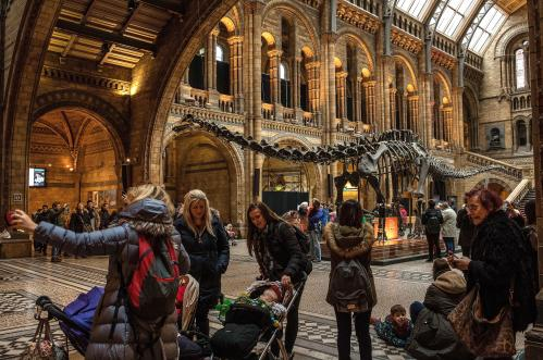 Visitors get a last look at Dippy the diplodocus at the Natural History Museum in west London