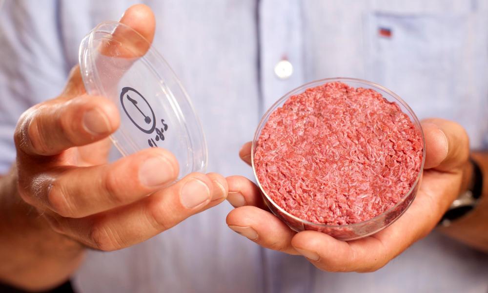 A lab-grown burger.