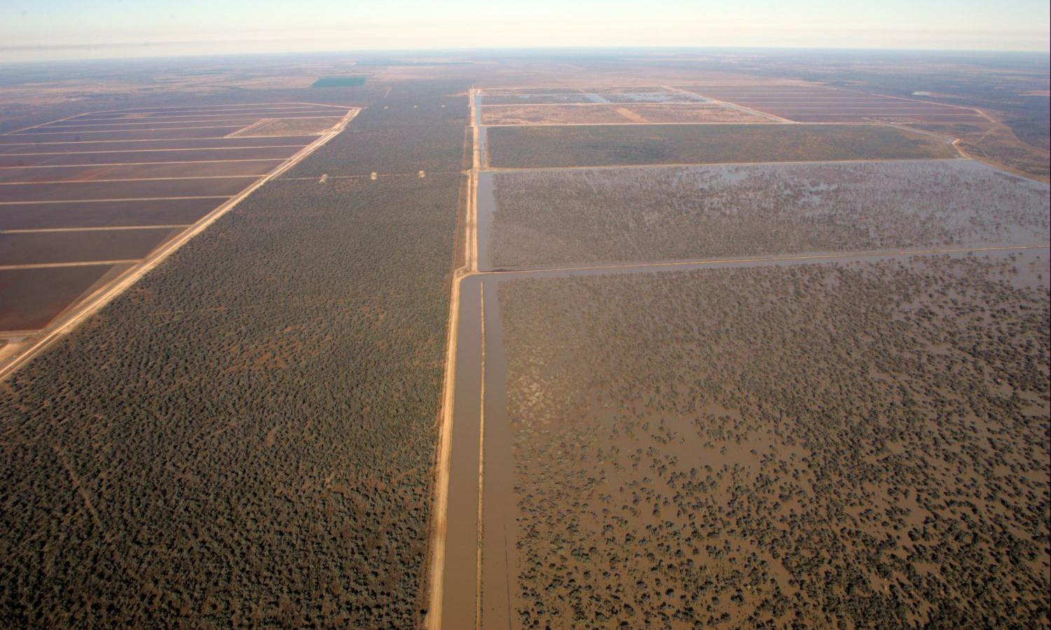 SA water minister vows to divest from Macquarie after it buys into cotton giant Cubbie