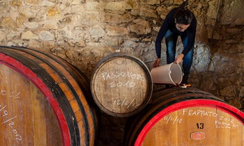 On Tuesday 9 May, Guardian Members are invited for a Sicilian feast in the company of talented wine-maker Arianna Occhipinti