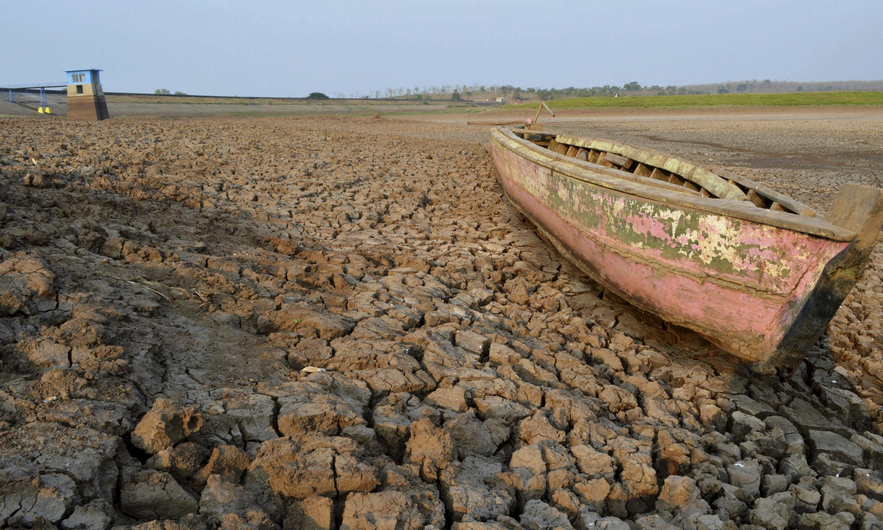 Accountants urged to help firms worldwide combat climate crisis