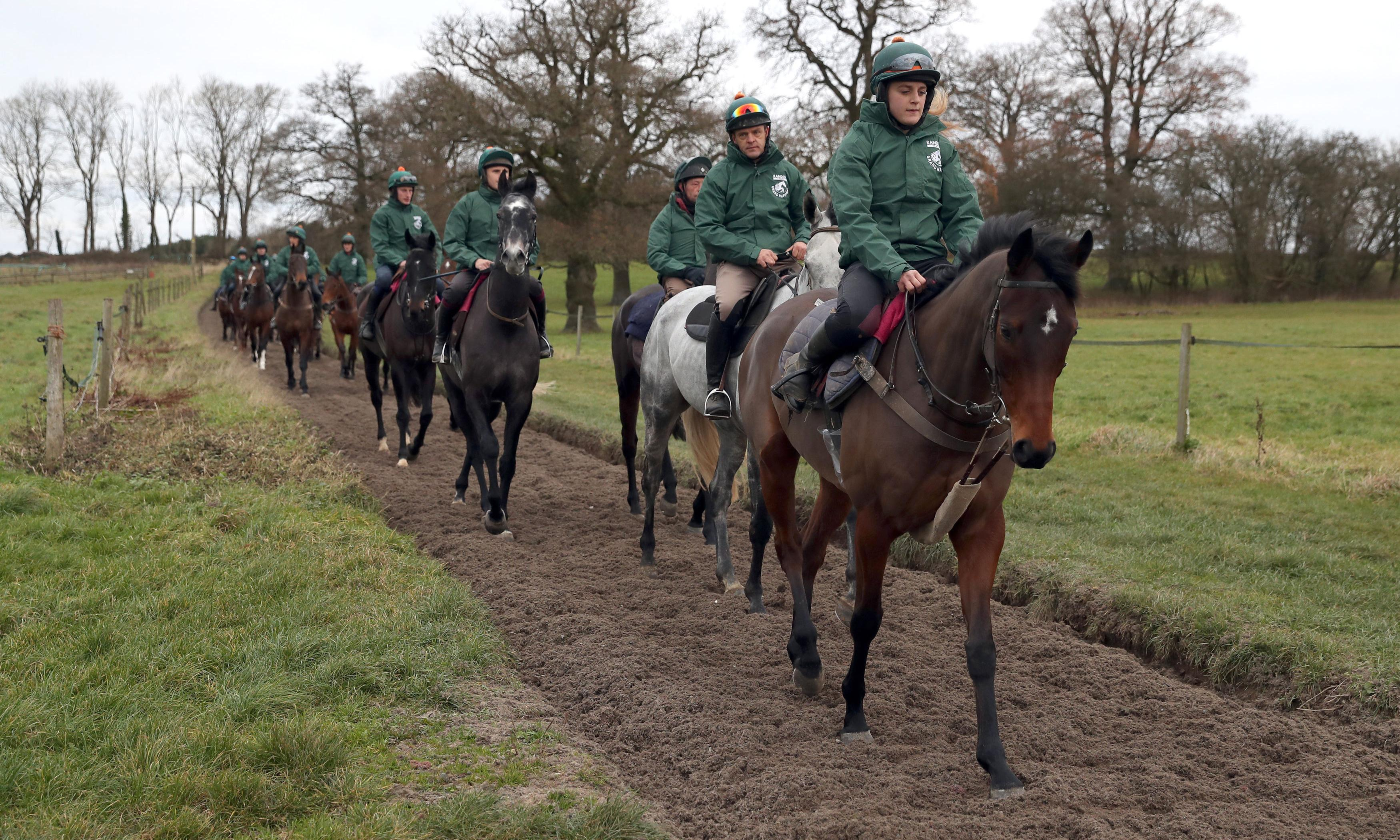 Talking Horses: Blaklion sale shows Grand National dream is potent as ever