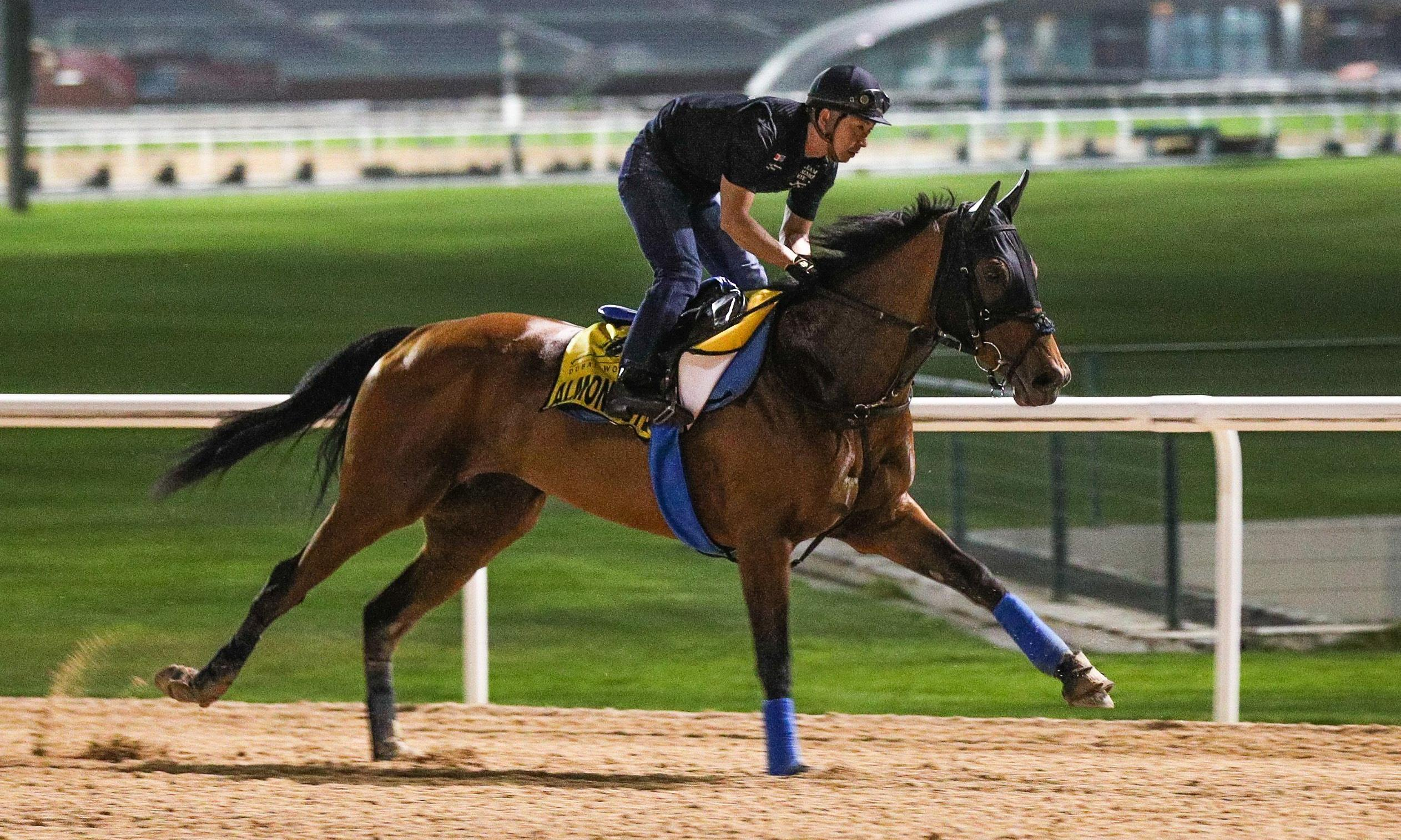 Dubai World Cup: Almond Eye on a mission to make history