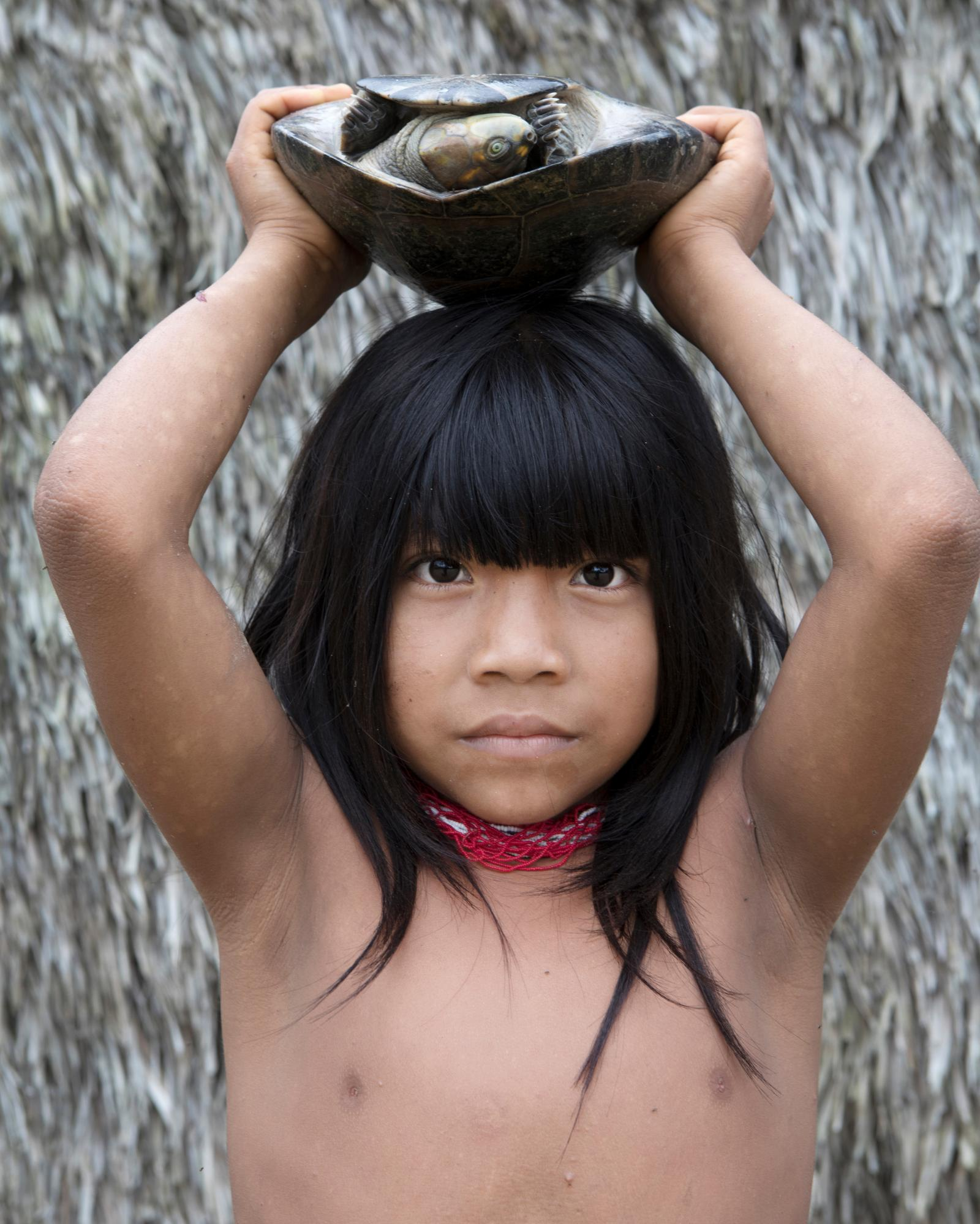Valuable lost tribe of the amazon nude interesting