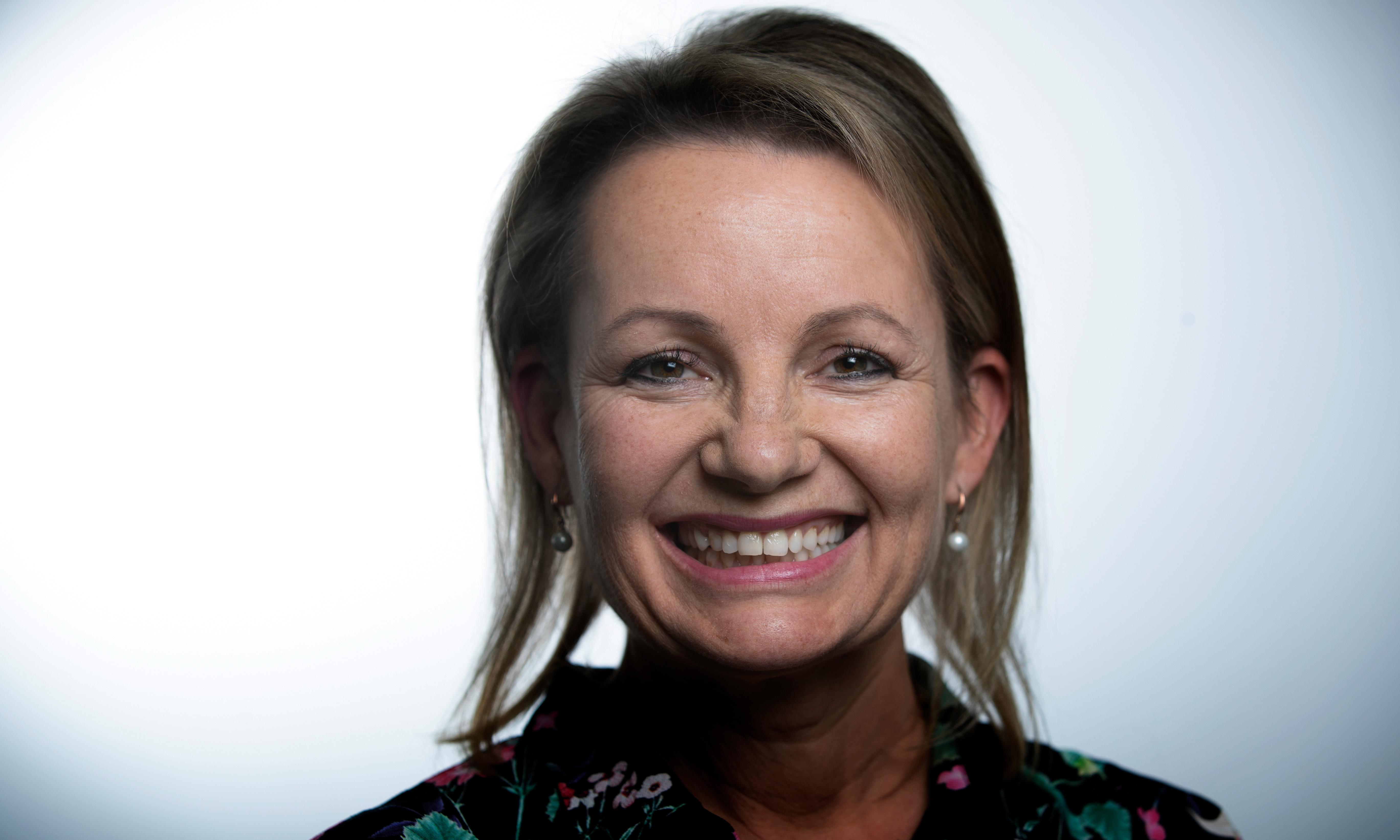 Sussan Ley: I'll be an environmentalist as minister