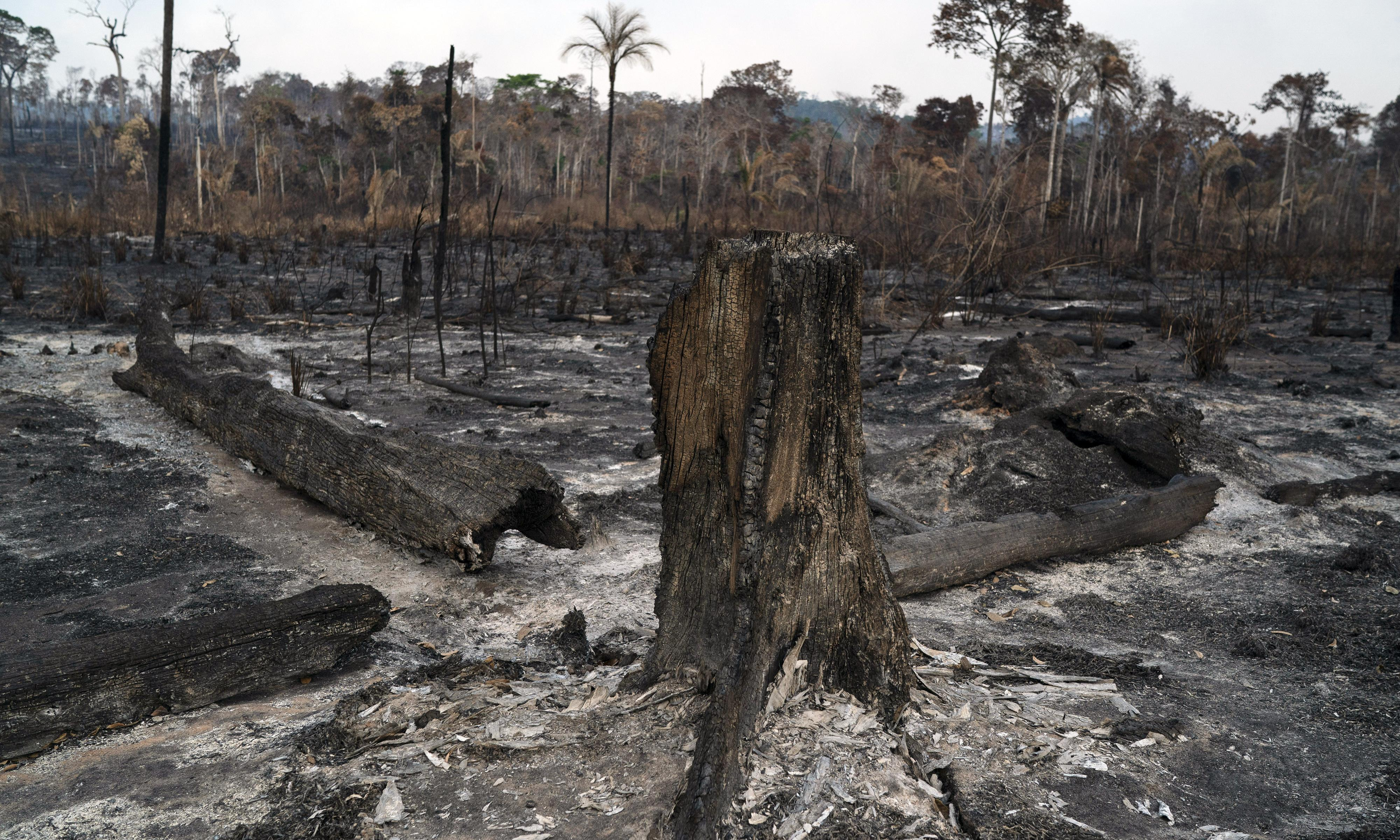 Brazilian warplanes dump water on Amazon fires as outcry mounts