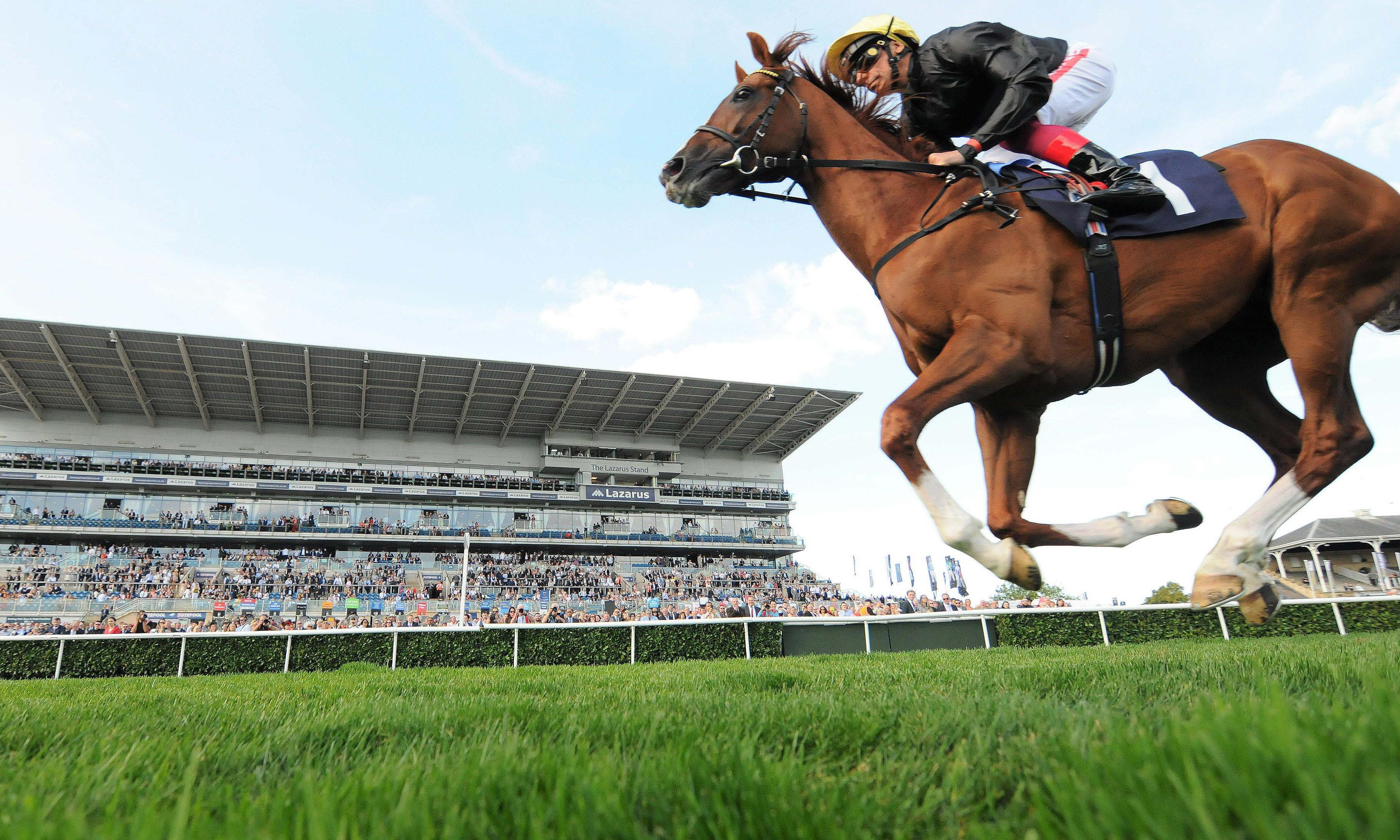 Talking Horses: Stradivarius lifts Doncaster Cup for John Gosden
