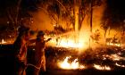 Firefighters attempt to extinguish a bushfire at the Windsor Downs Nature Reserve, near Sydney September 10, 2013
