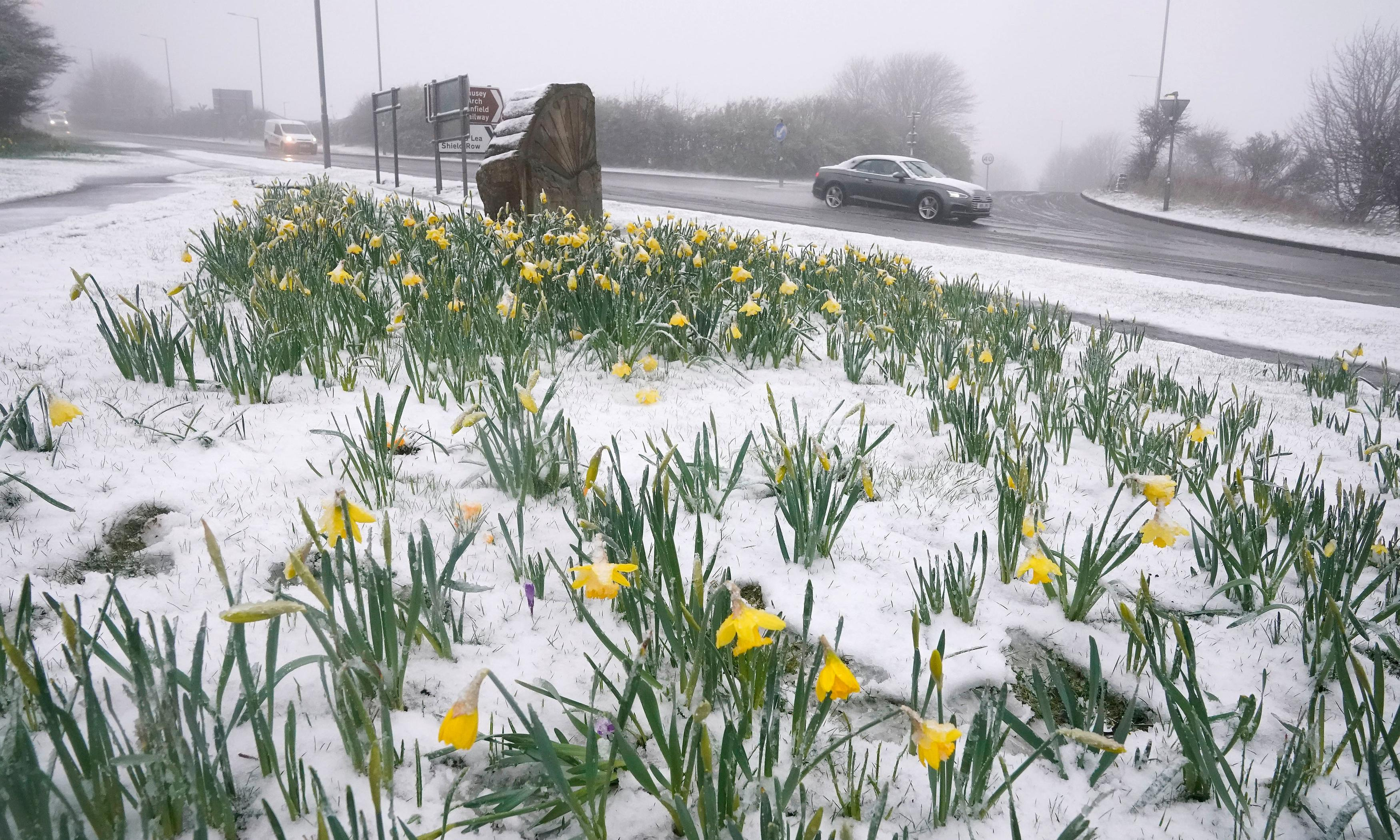 UK weather: wintry conditions forecast for much of country