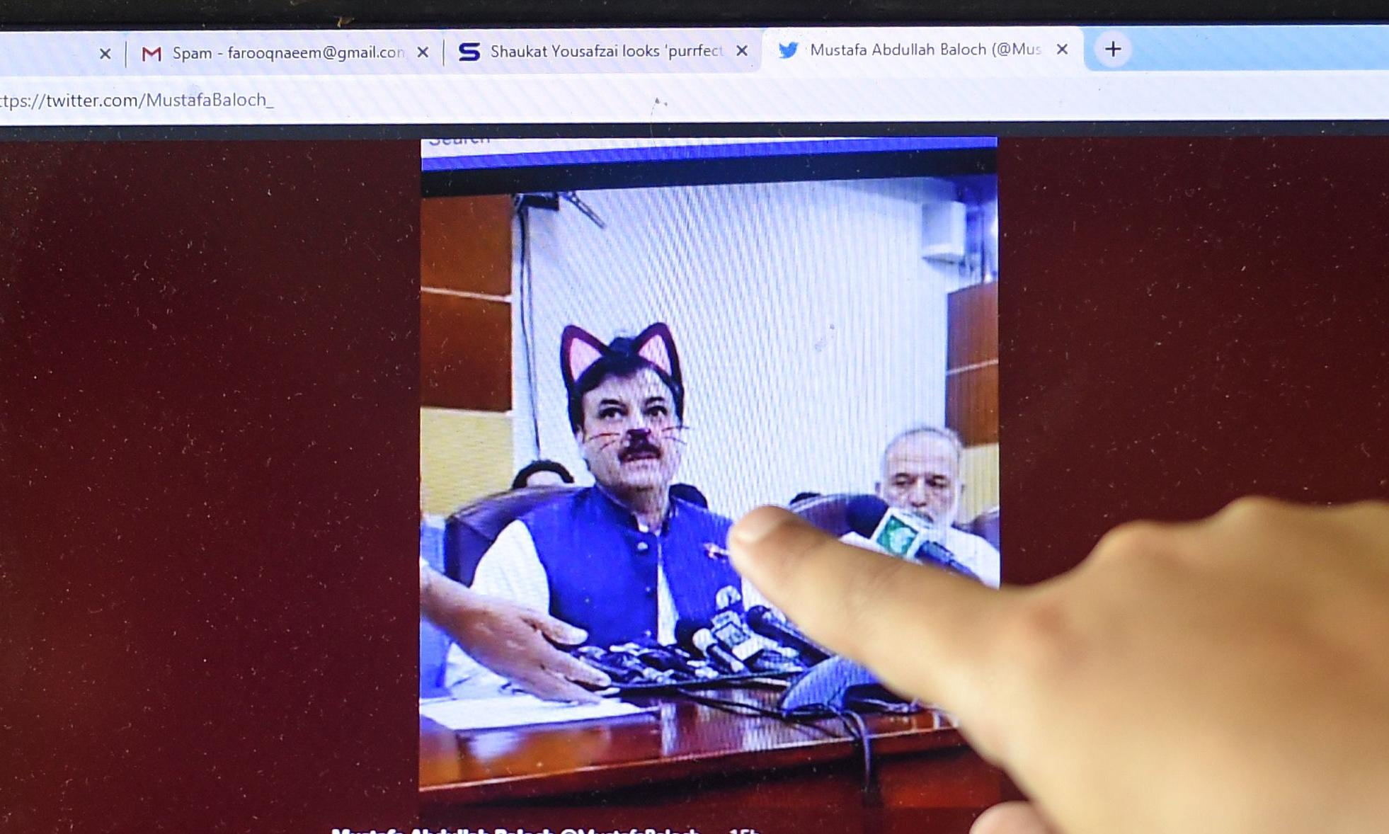 Accidental cat filter appears on Pakistan official's briefing