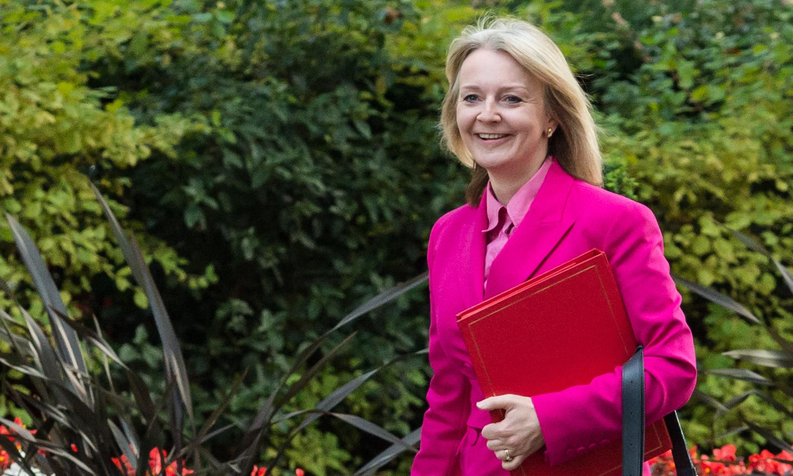 Boris Johnson gives new roles to Truss and Goldsmith in mini-reshuffle