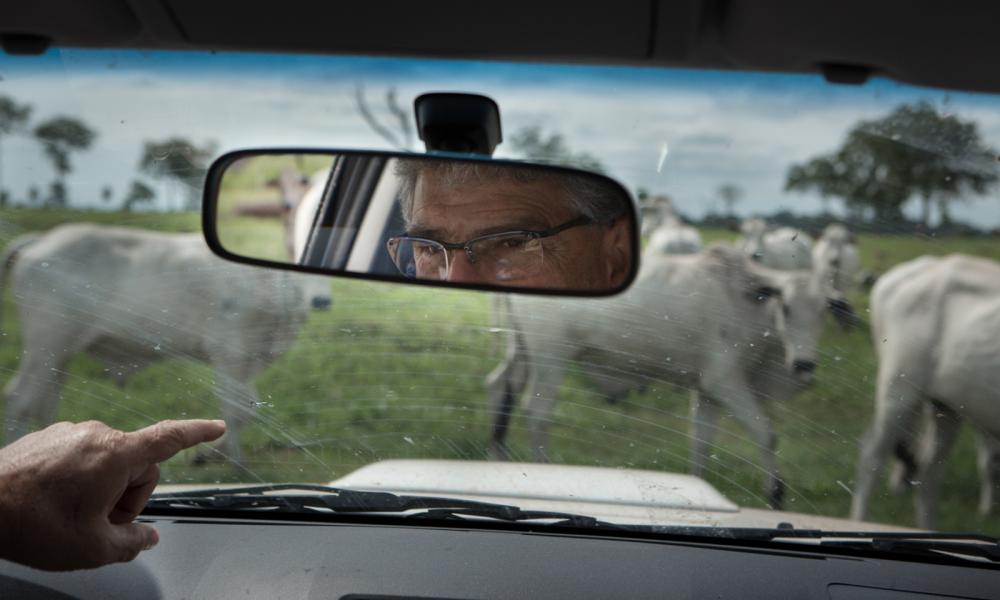 Ronaldo Rodrigues da Cunha visits by car the various pastures of Corixo farm that has 7000 alqueires. In each pasture a selection of animals of different ages, all coming from artificial insemination of semen and ovules of carefully selected animals. Mato Grosso, Brazil