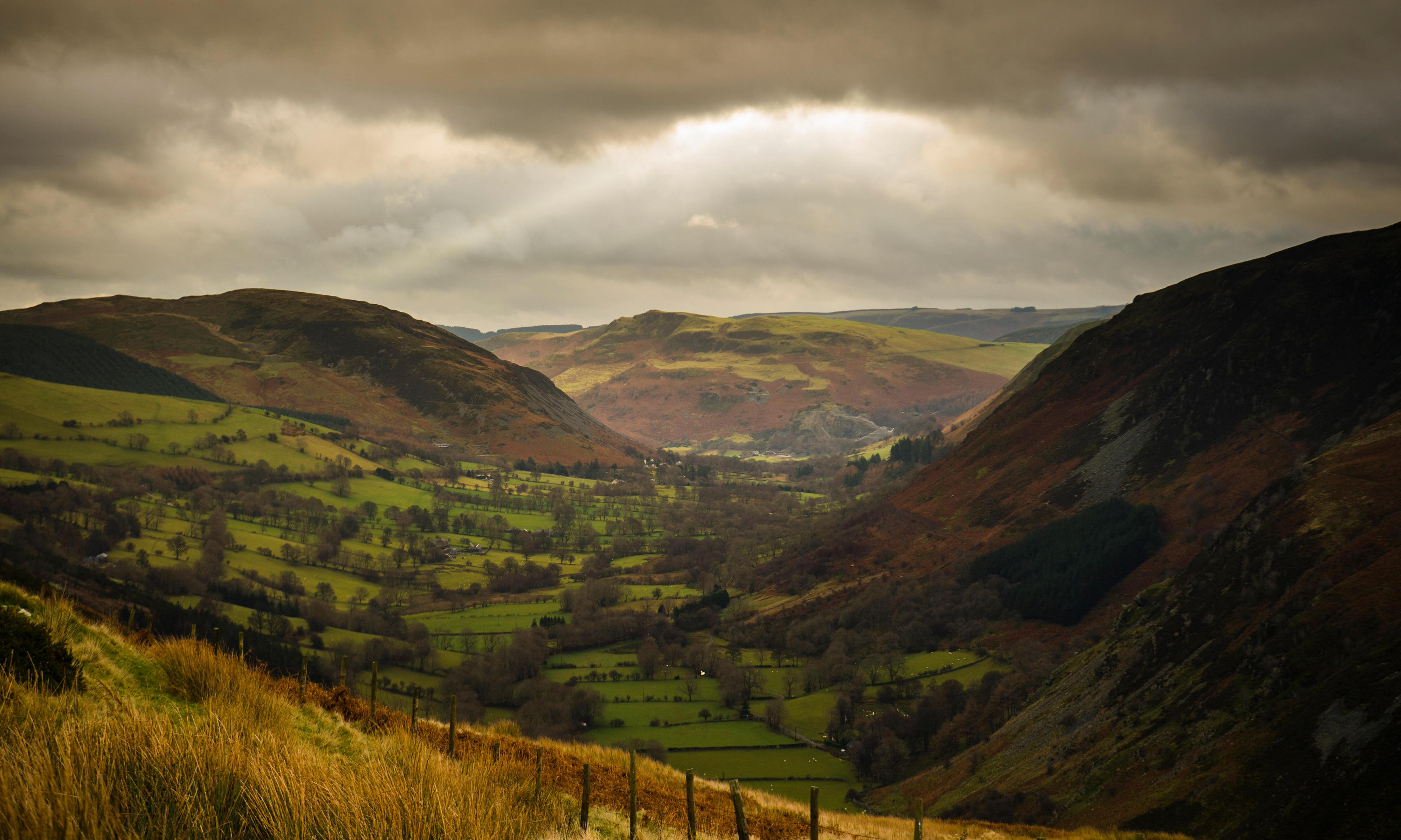Country diary: A wild walk to Llangynog, in the footsteps of Coleridge – Jim Perrin