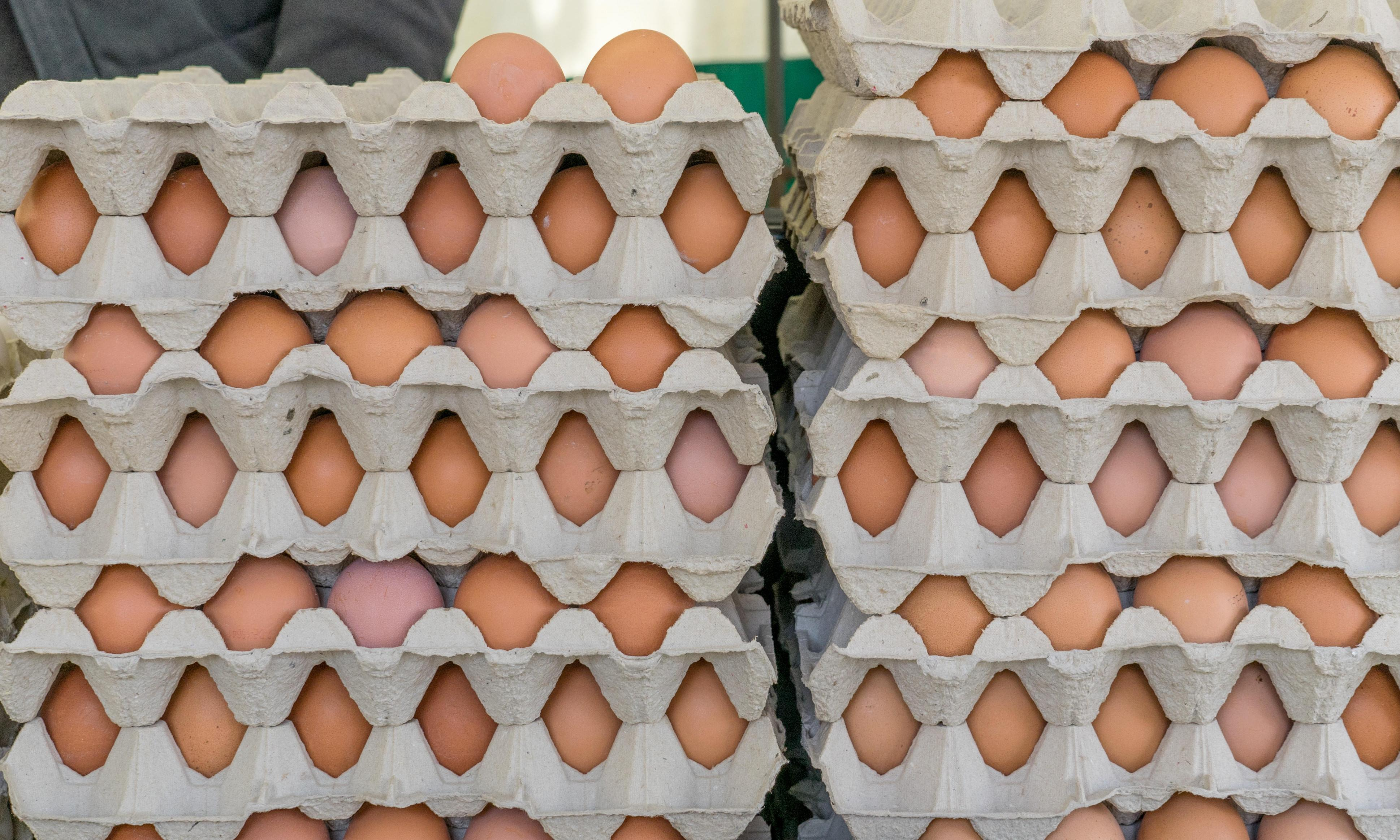 Salmonella alert issued after 100 people infected by UK eggs in three years