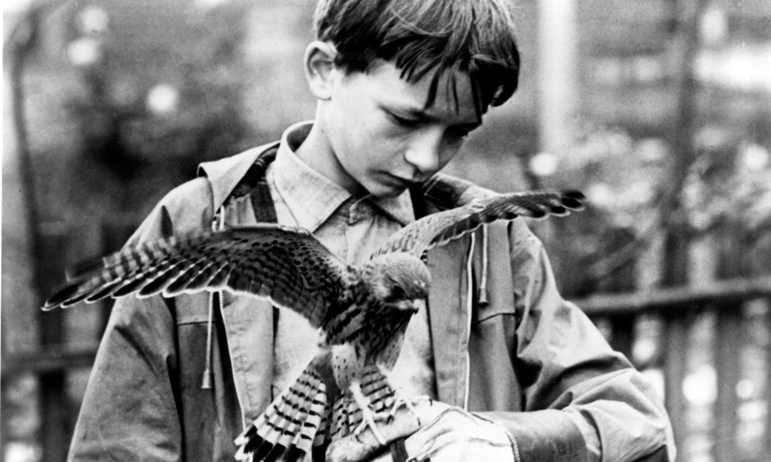 Kes reviewed: drawing the curtains on Barnsley - archive, 20 November 1969