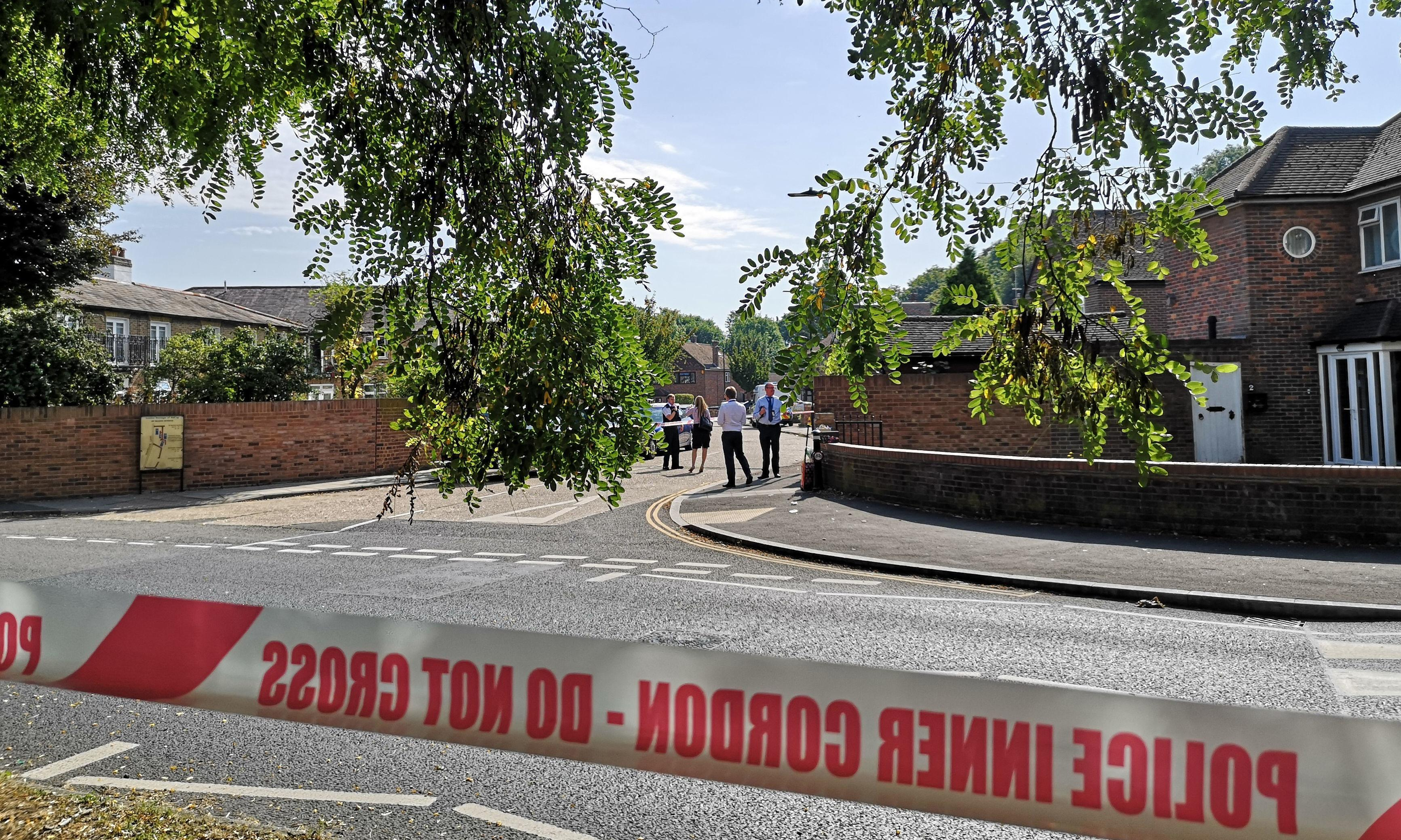 Man, 69, stabbed to death in quiet west London suburb