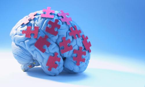 Are our brains becoming overwhelmed by too much information?