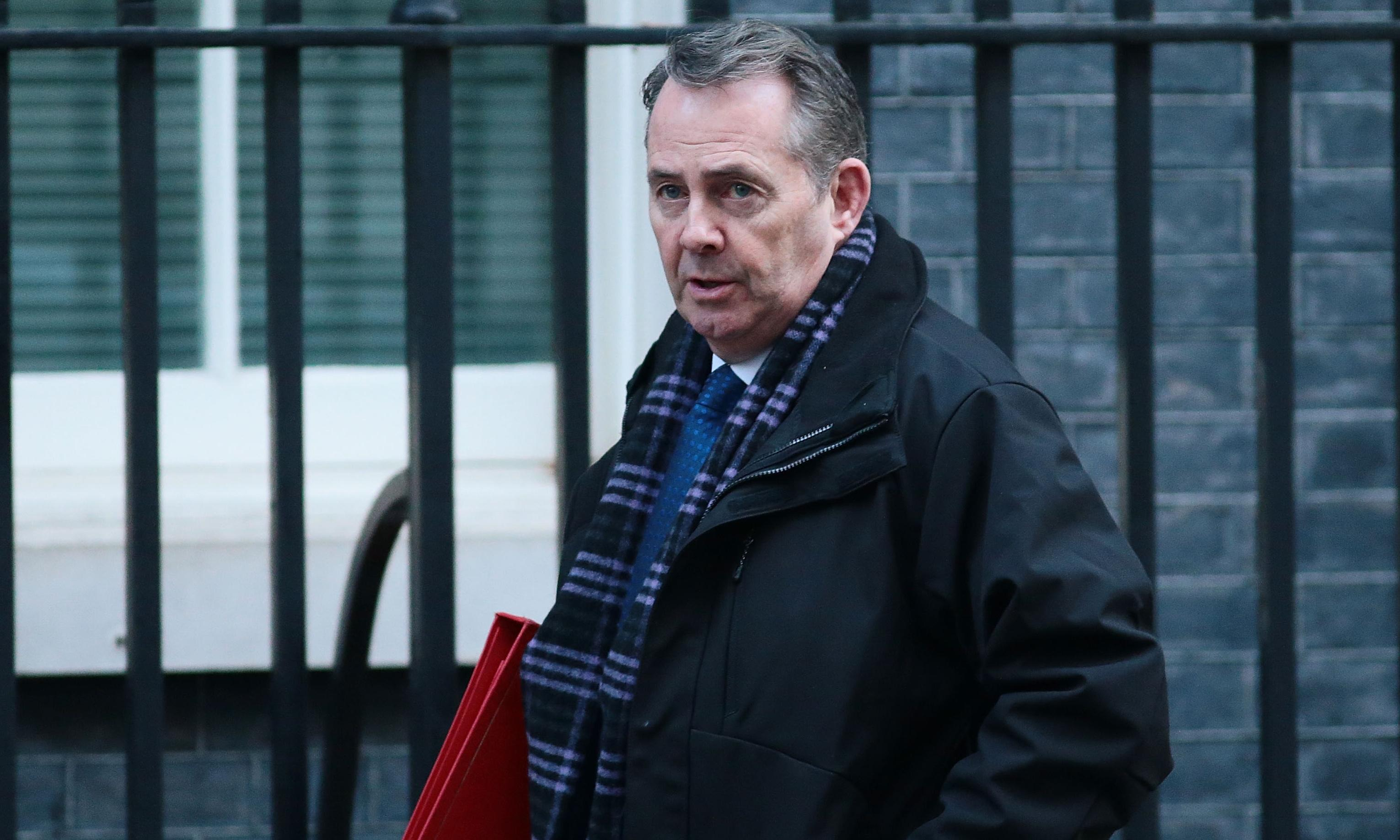 Liam Fox accuses MPs of trying to 'steal' Brexit from voters