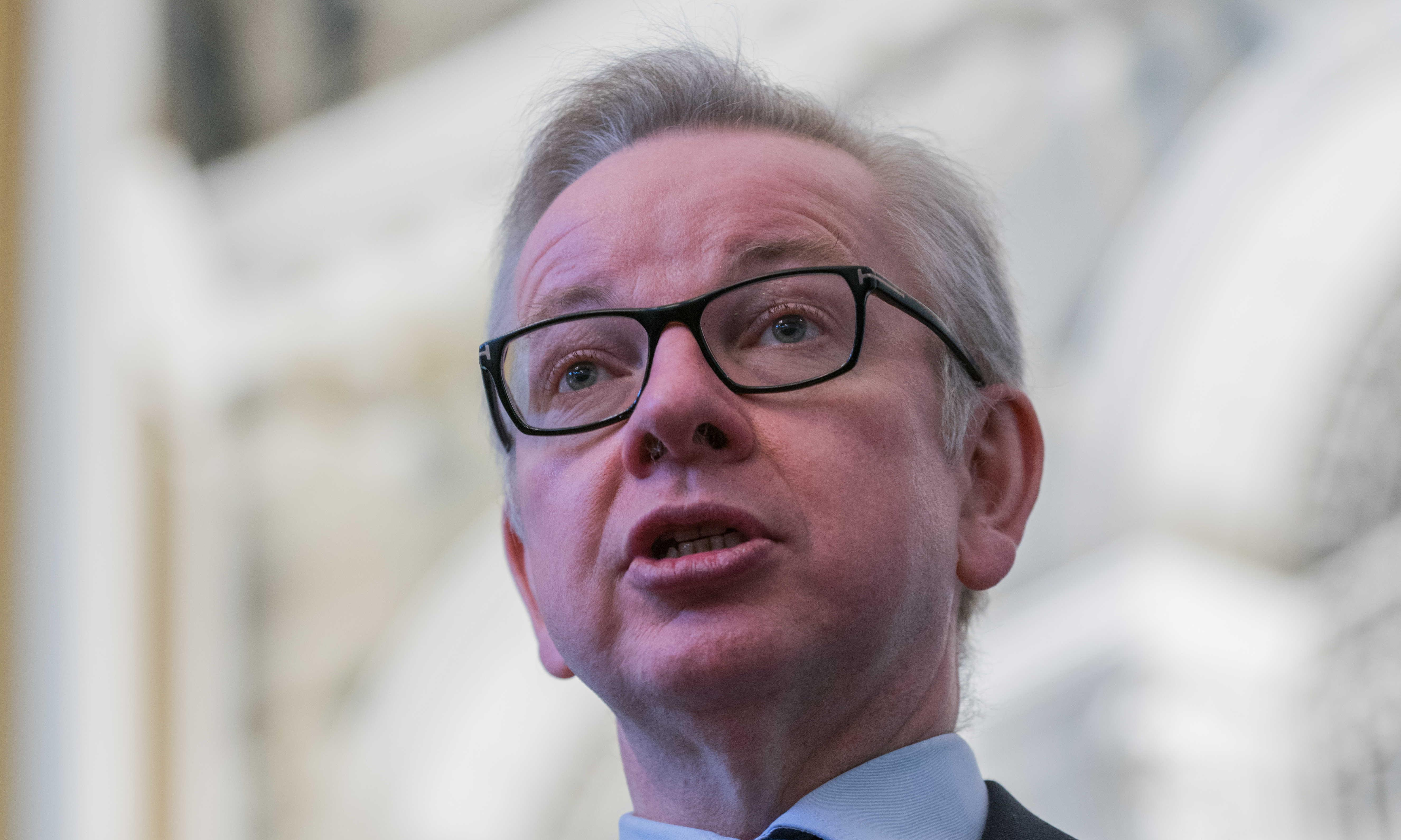 UK will apply food tariffs in case of no deal, Michael Gove says