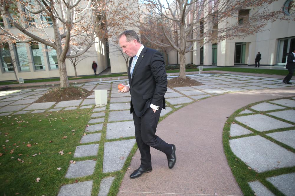 Agriculture minister Barnaby Joyce makes off with an apple.