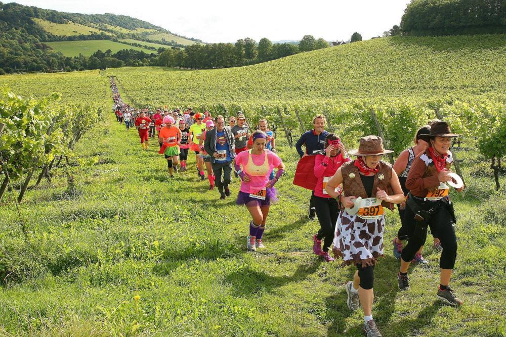 A fun run through the vineyard