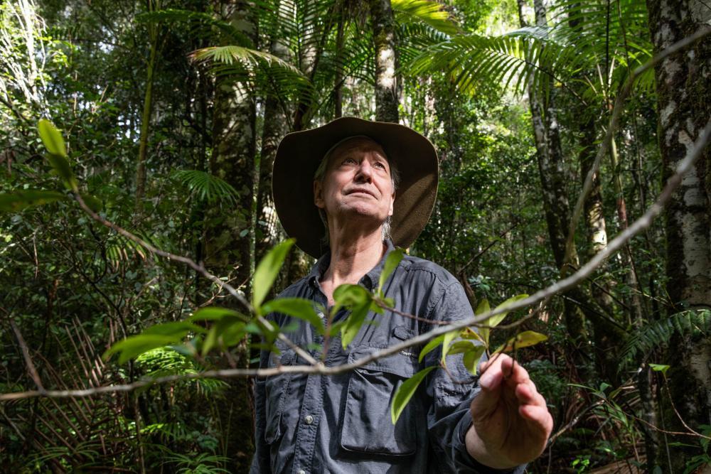 Botanist Robert Kooyman in Nightcap national park.