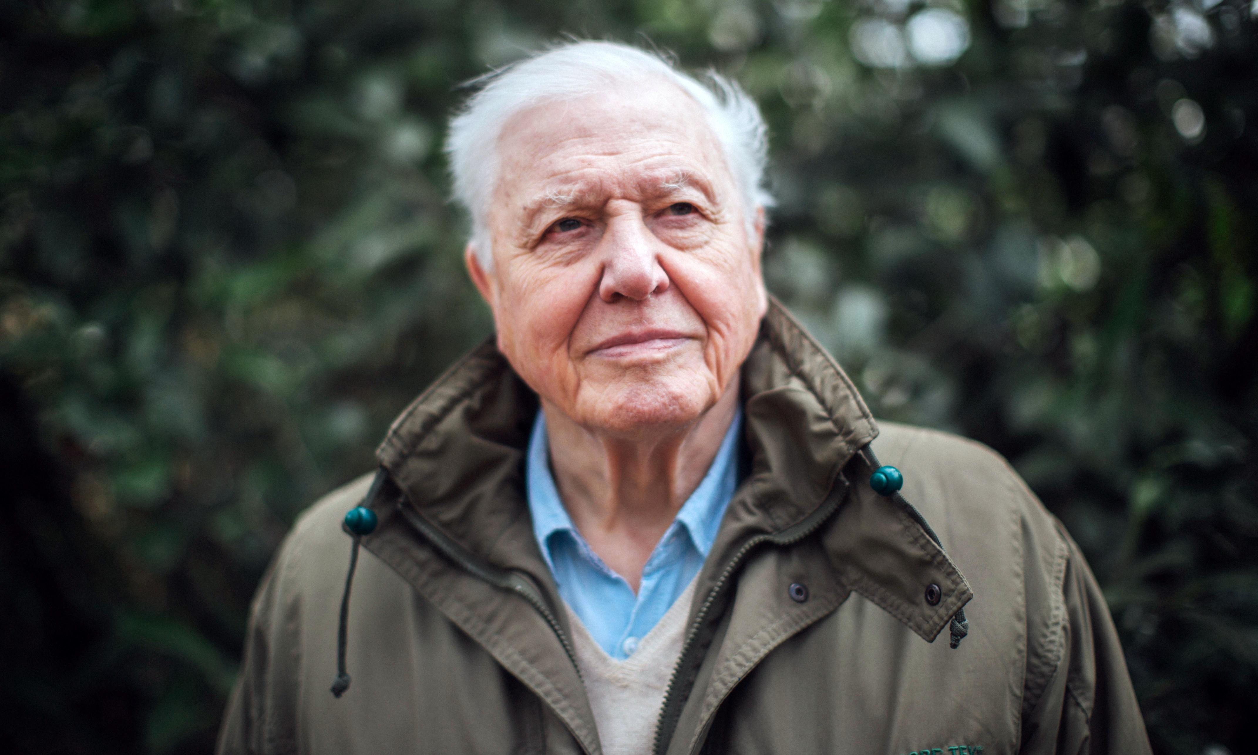 Attenborough to front climate-change film as BBC moves from teach to preach