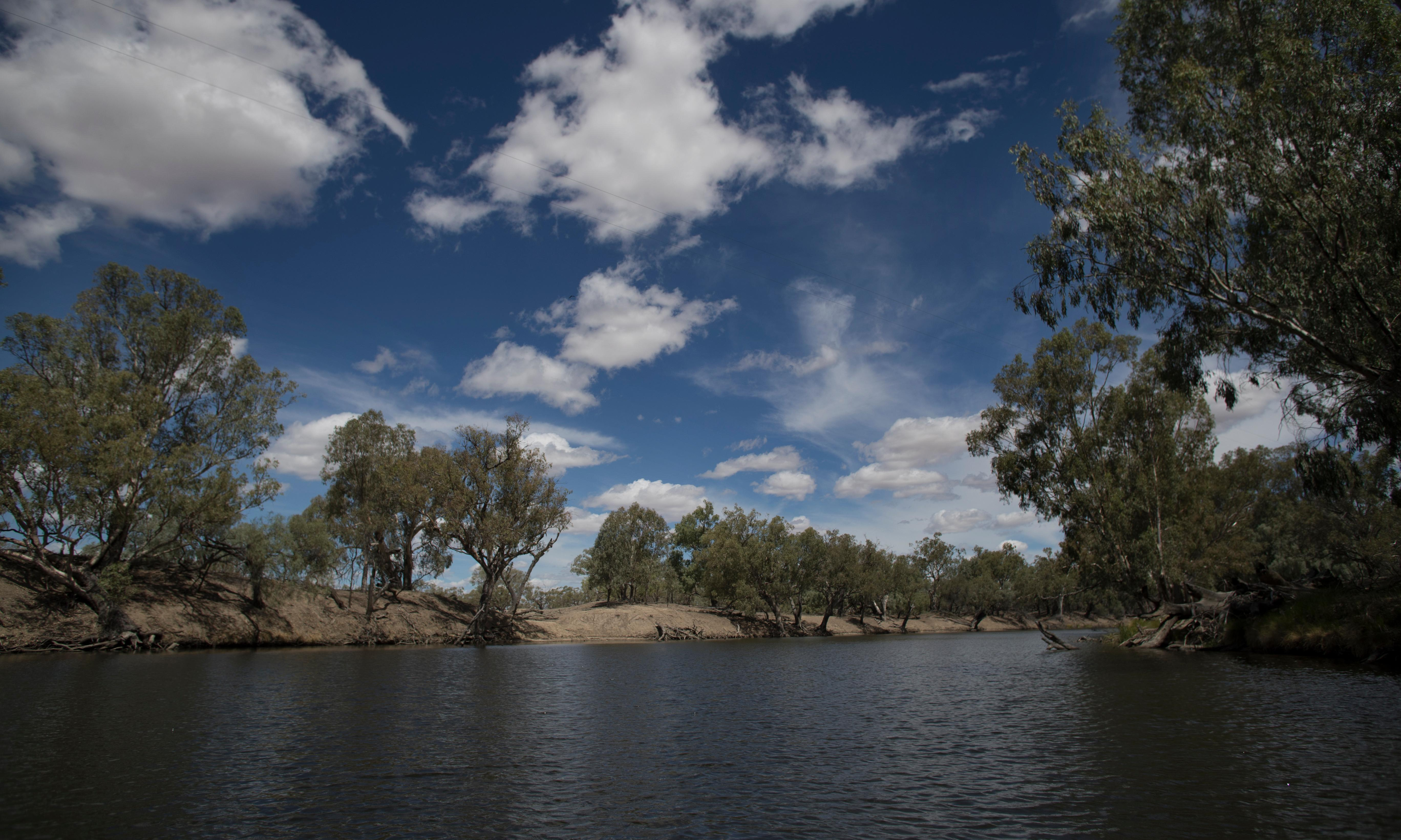 Big irrigators take 86% of water from Barwon-Darling, report finds