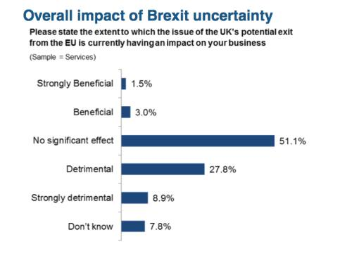 Services firms' views on referendum effects