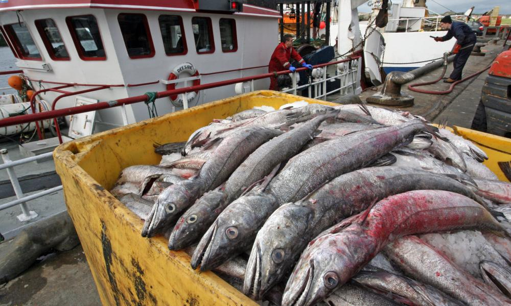 Norway has backed the EU's stance on fishing during the Brexit transition period.