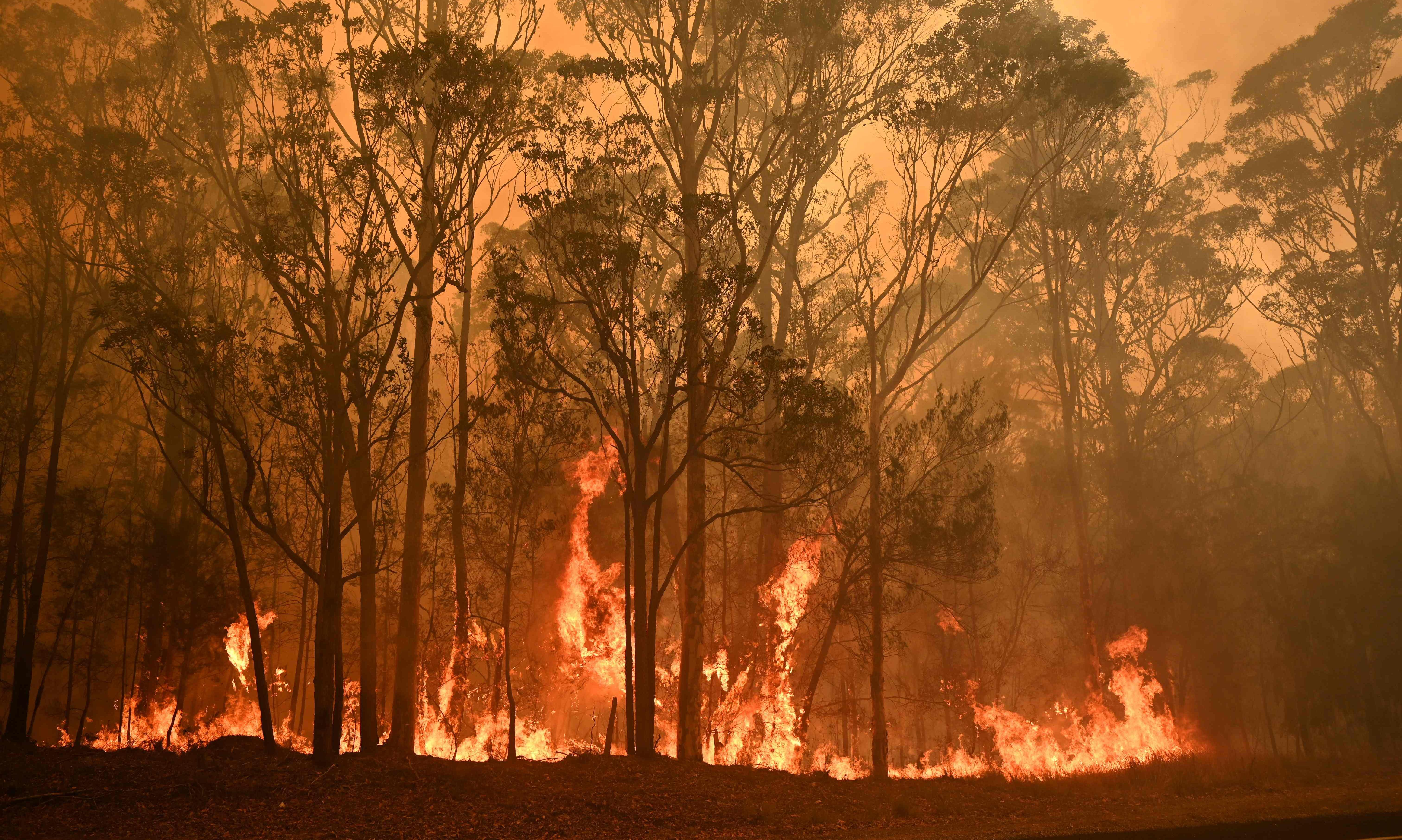 Australia is built on lies, so why would we be surprised about lies about climate change?