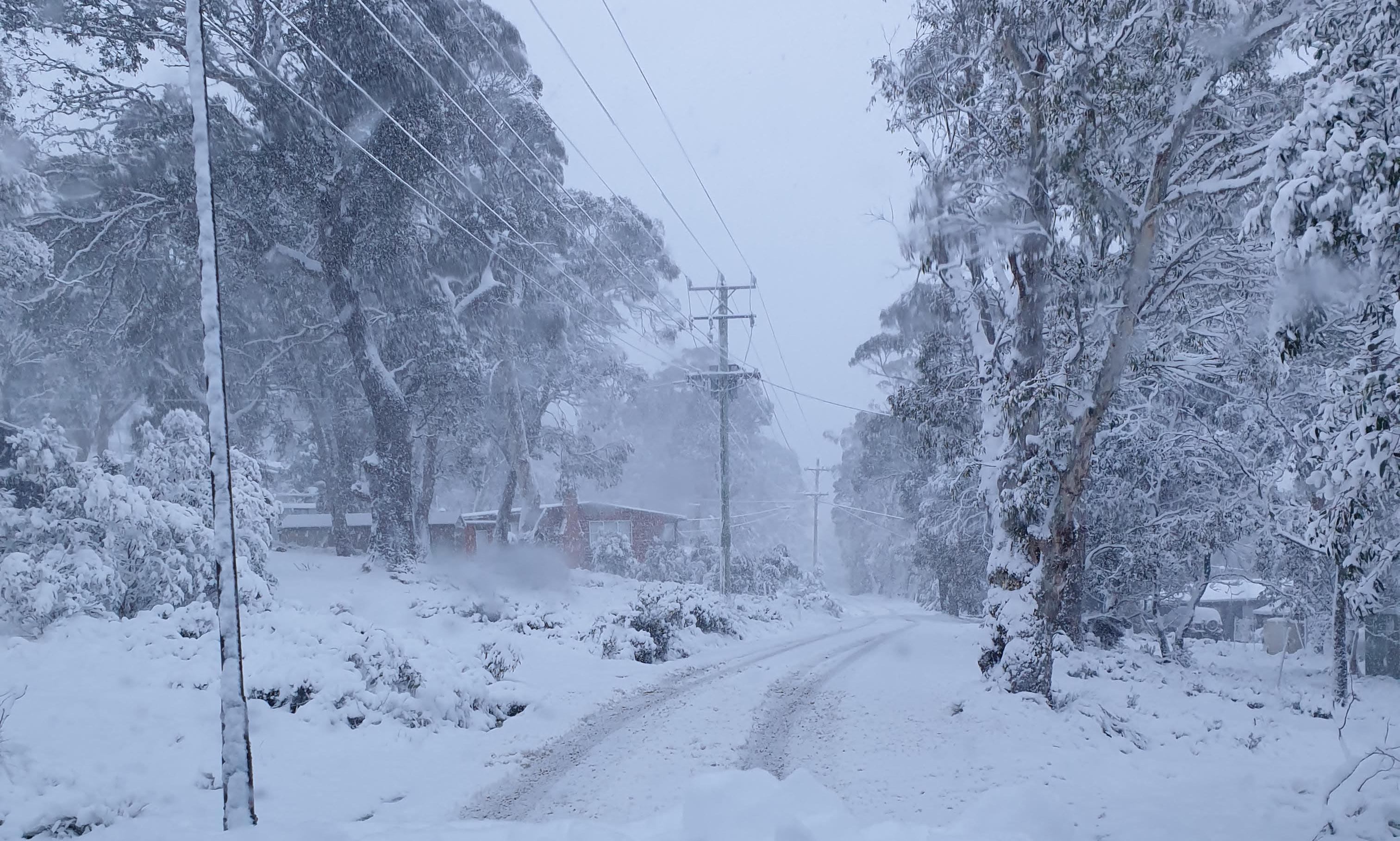 Spring snow blankets parts of Tasmania a week after bushfires raged