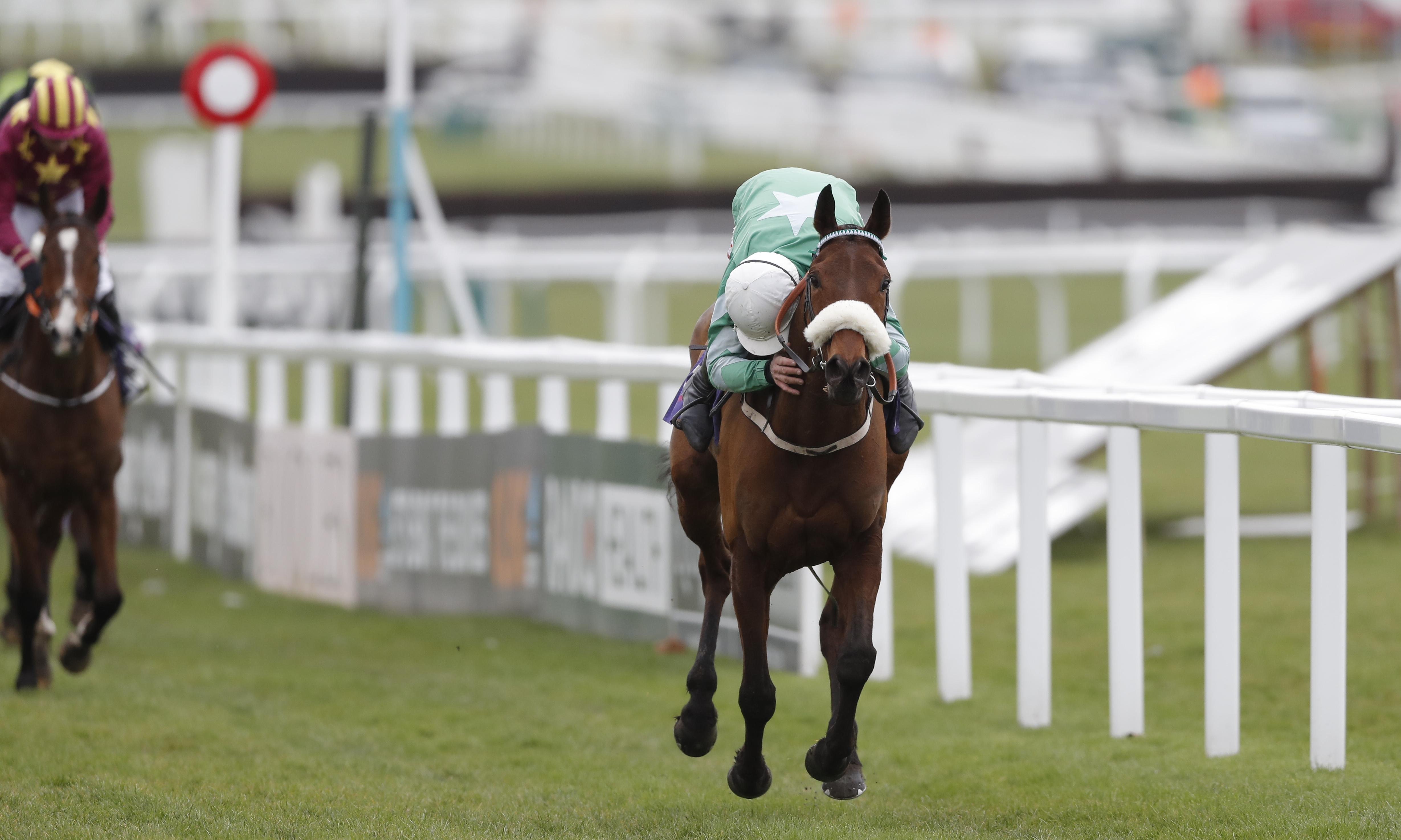 Presenting Percy may run this weekend despite owner's caution