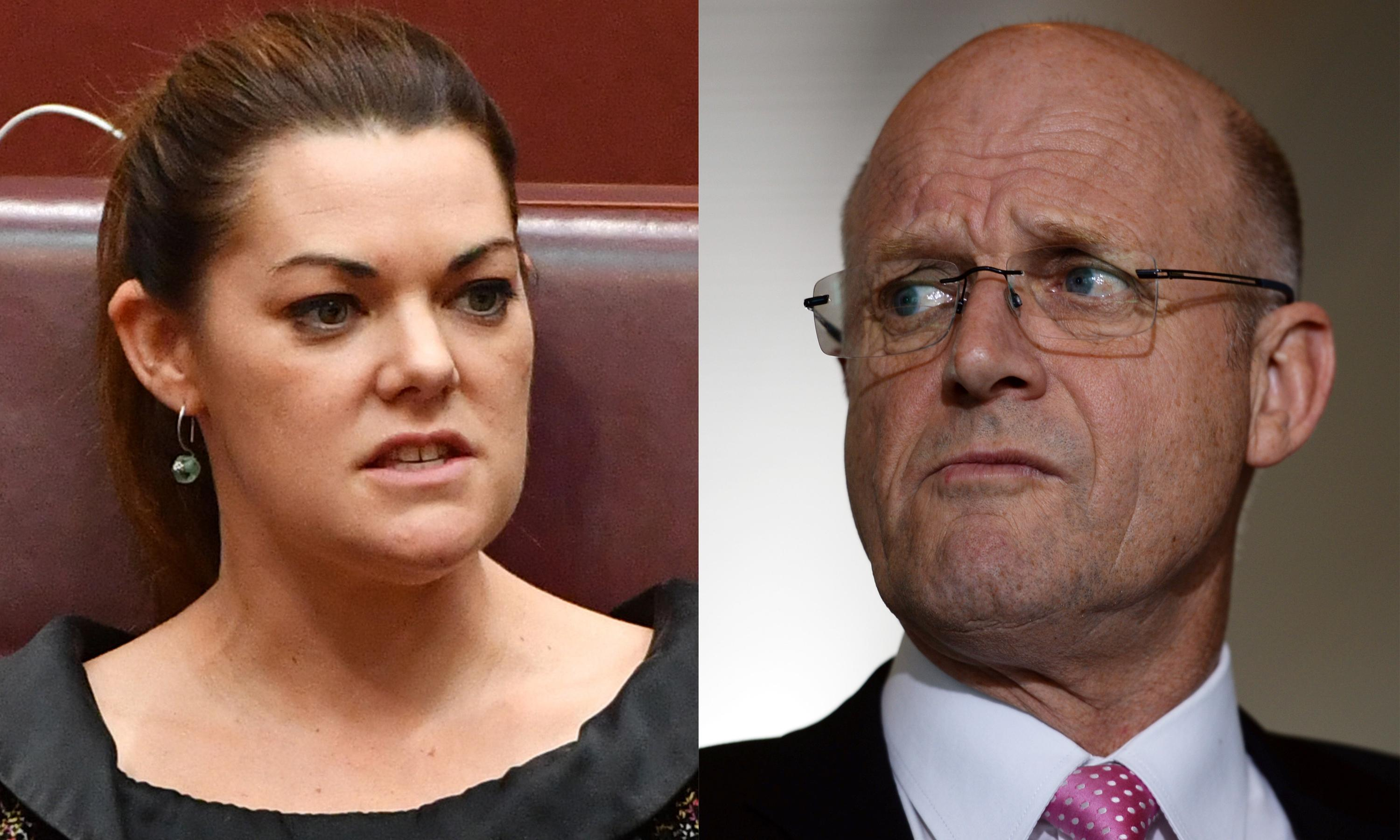 Senators to testify in Hanson-Young defamation trial against Leyonhjelm