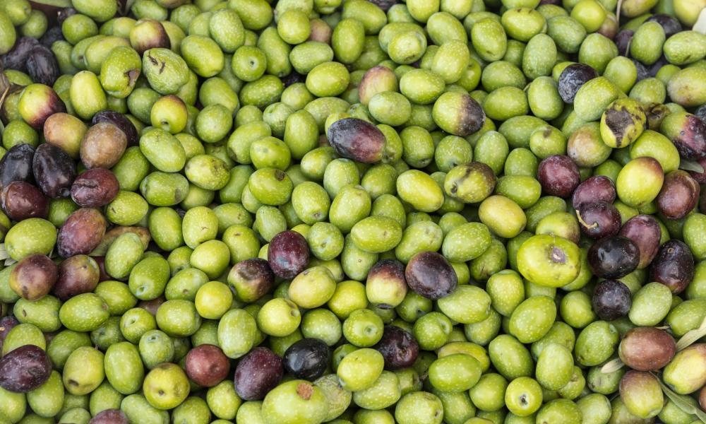 Full Frame Shot Of Green Olives For Sale At Market.