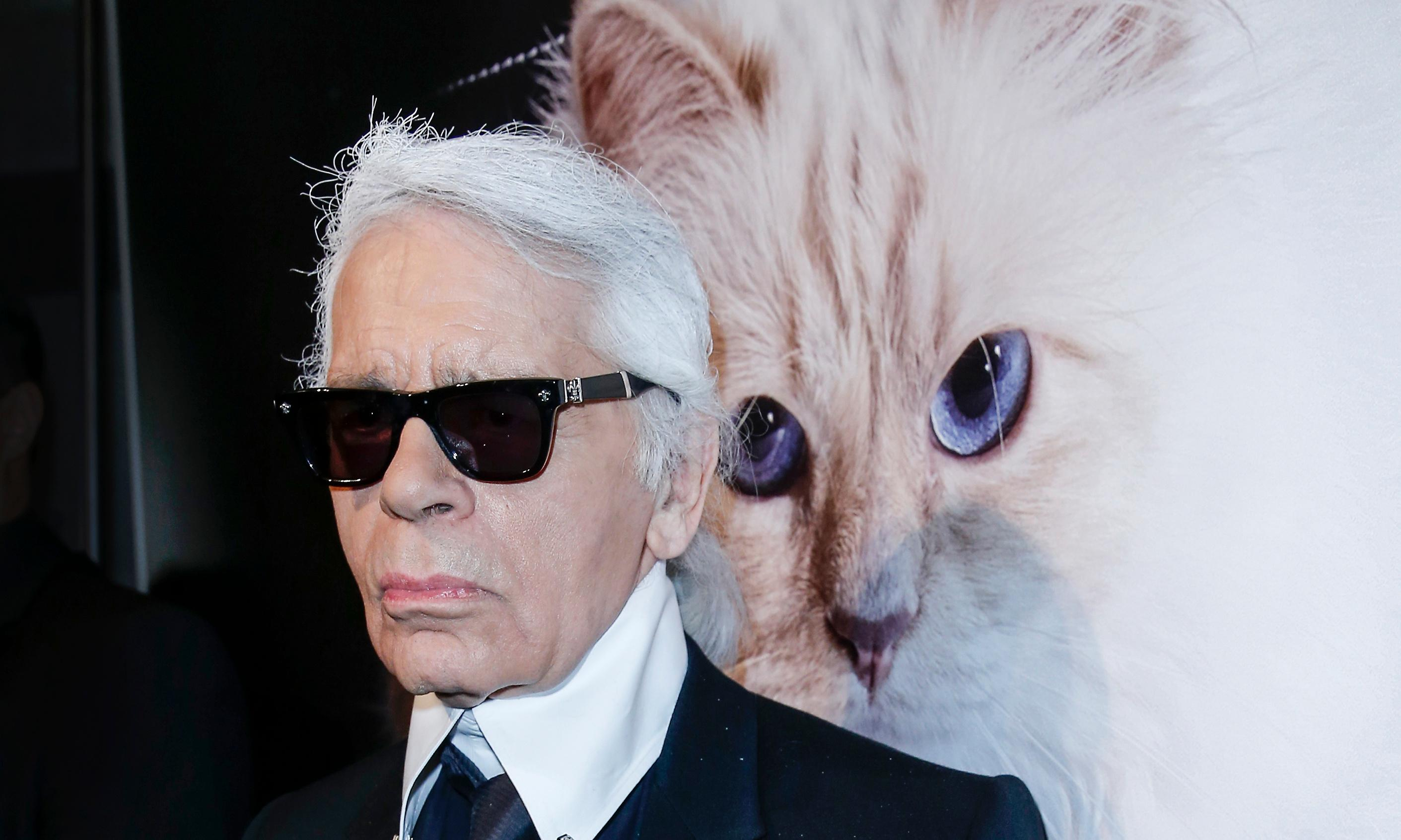 Is Karl Lagerfeld's cat Choupette the most pampered animal in fashion?
