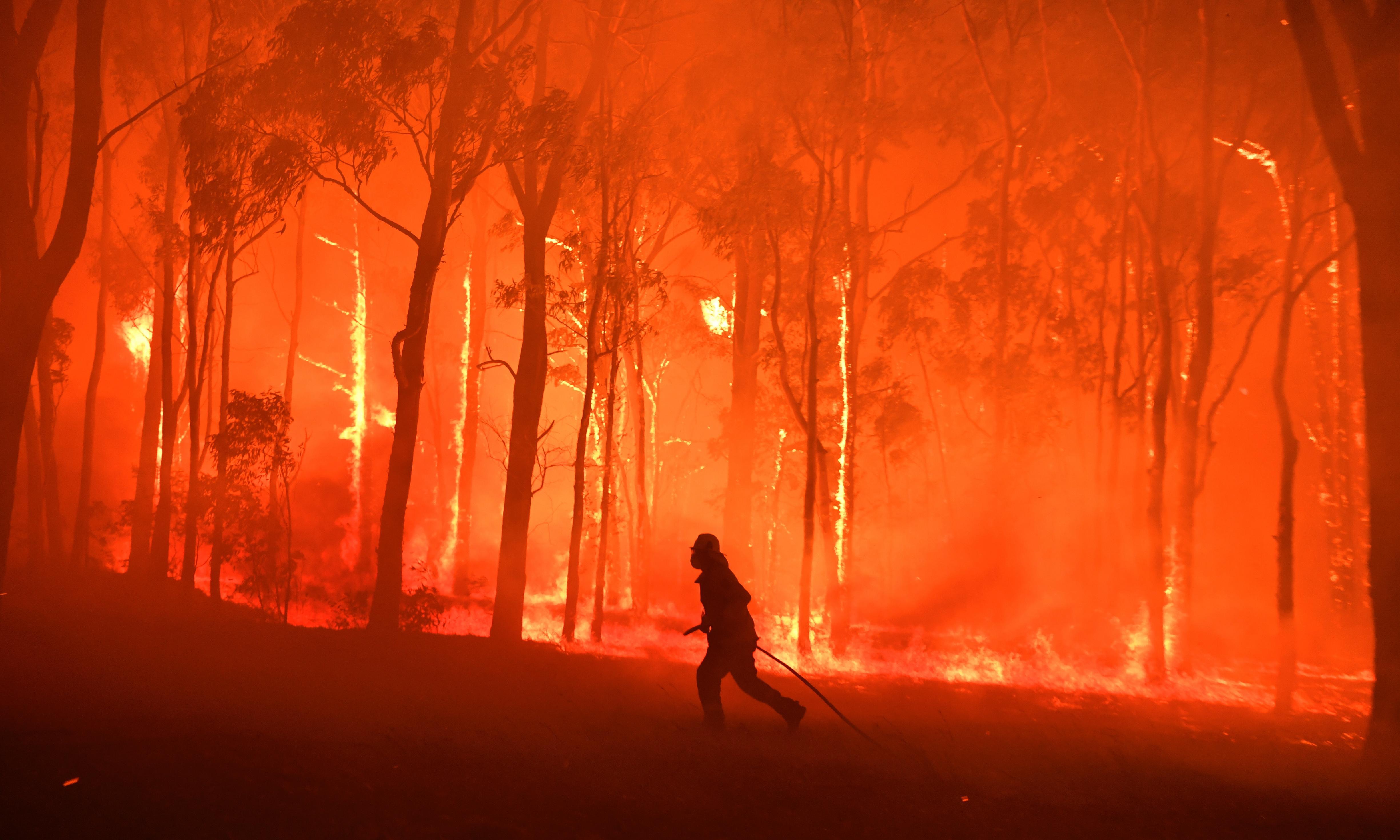 Australia bushfires factcheck: are this year's fires unprecedented?