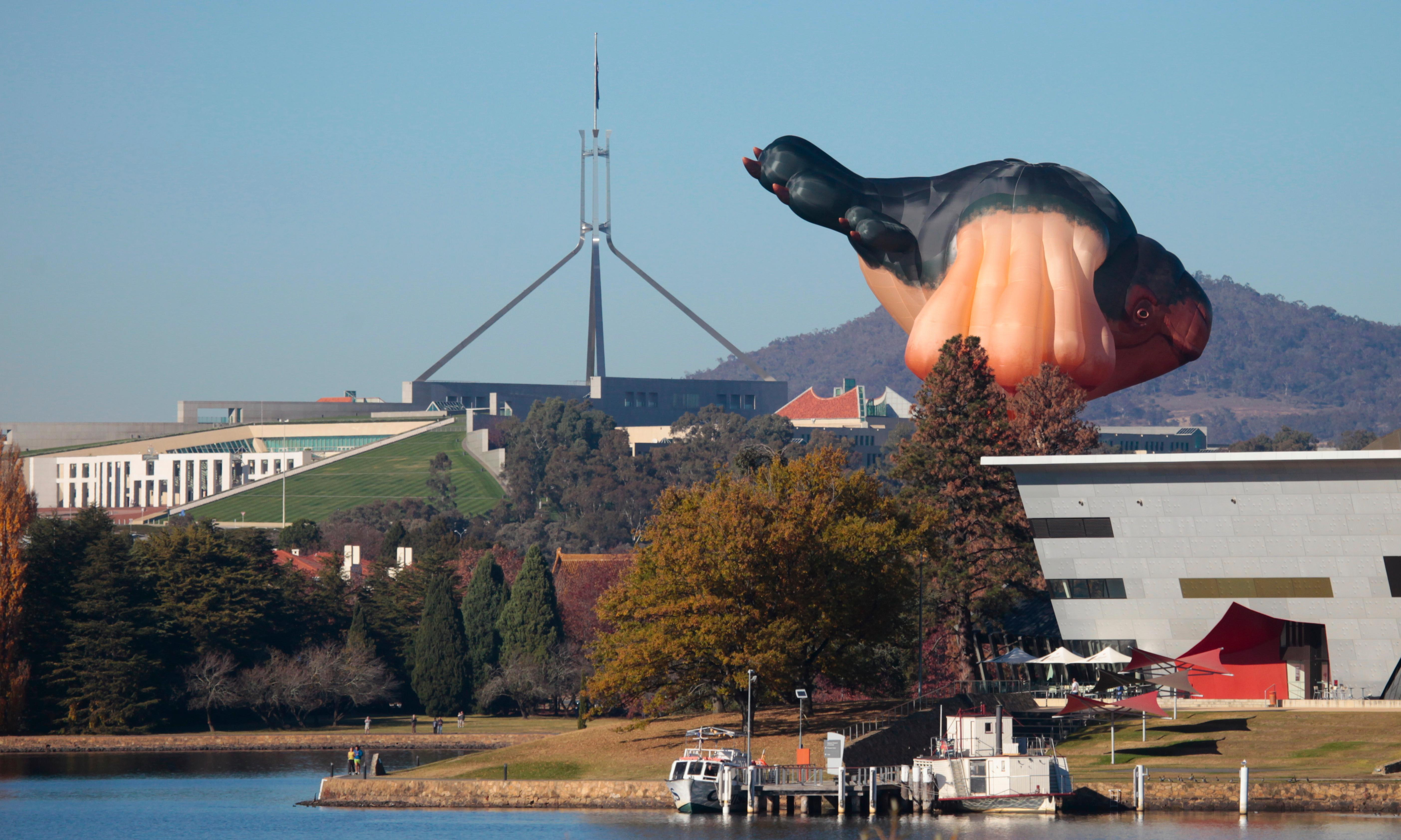 Skywhale creator unveils a companion, Skywhalepapa, to fly over Canberra