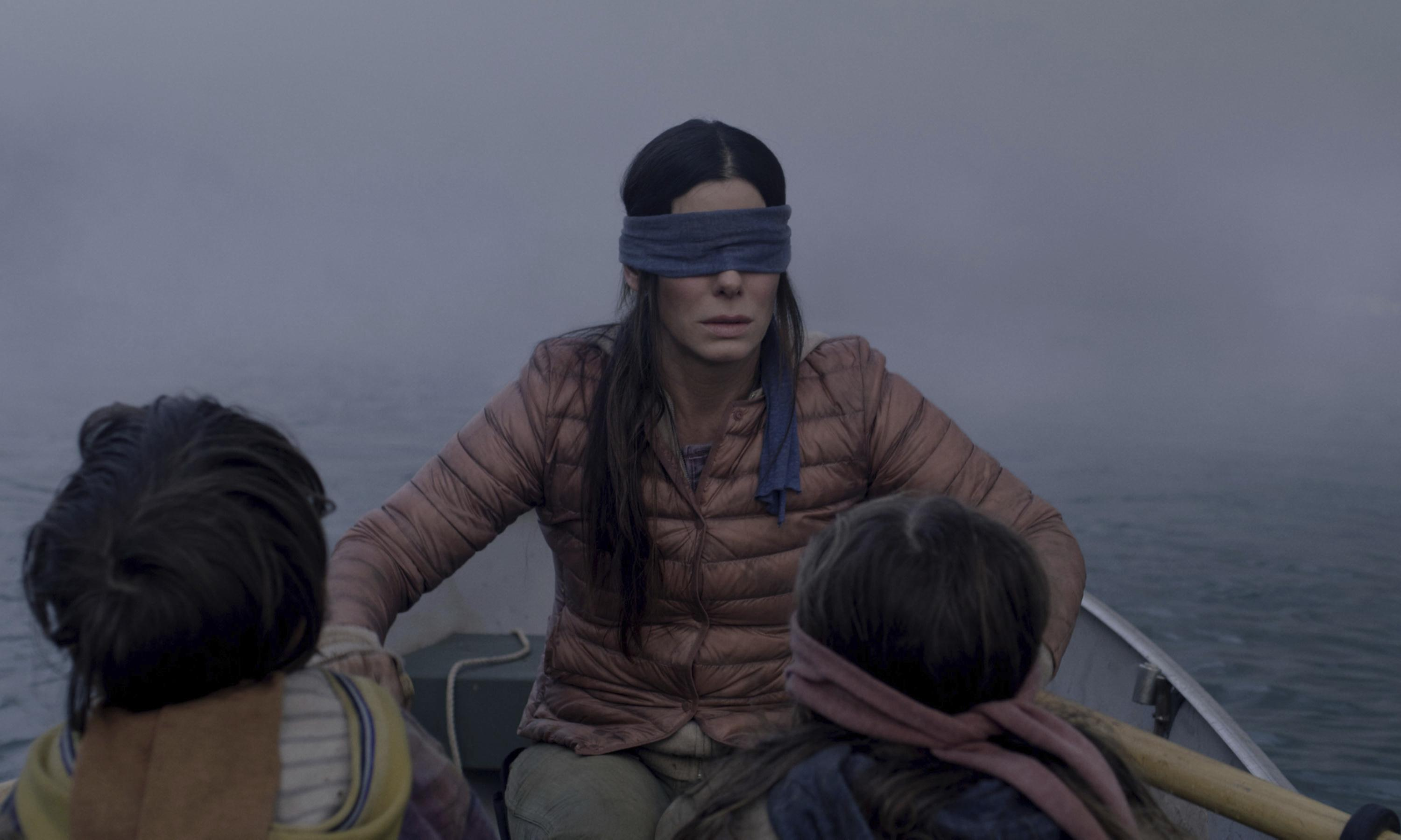 Netflix warns viewers against Bird Box challenge meme: 'Do not end up in hospital'